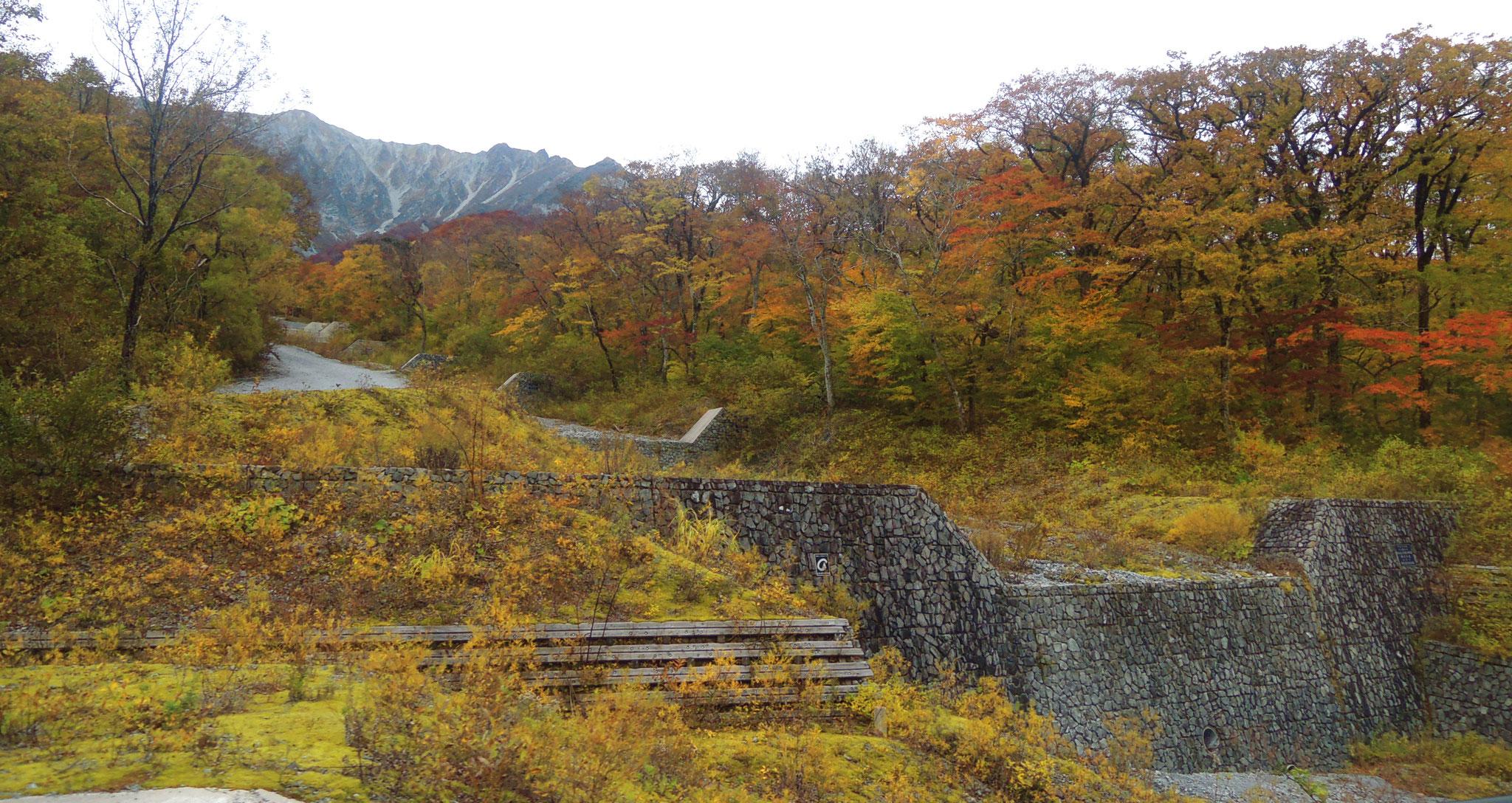 大山環状道路沿いの二の沢(標高970m)より。