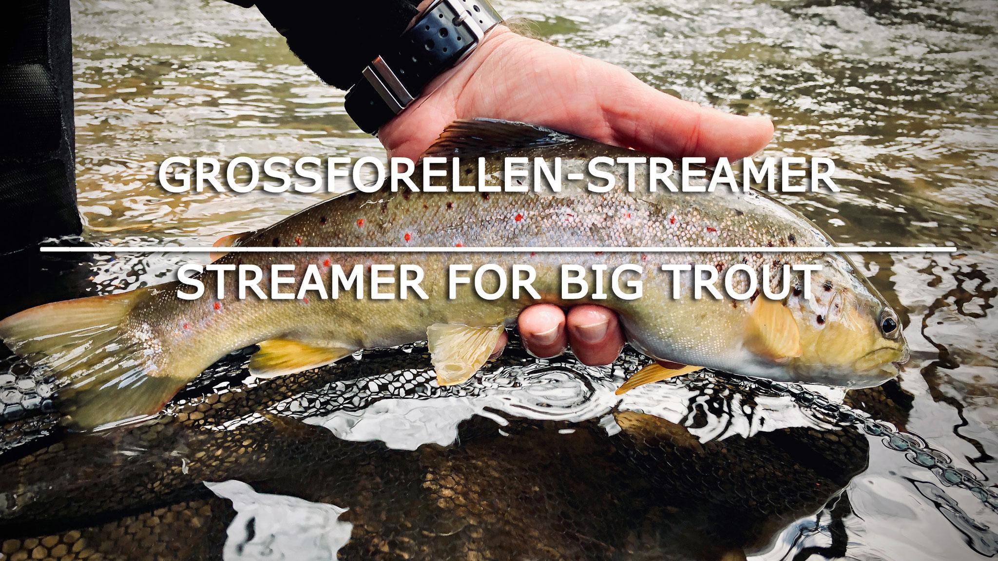 Grossforellen-Streamer / Fliegenfischerschule-Hessen