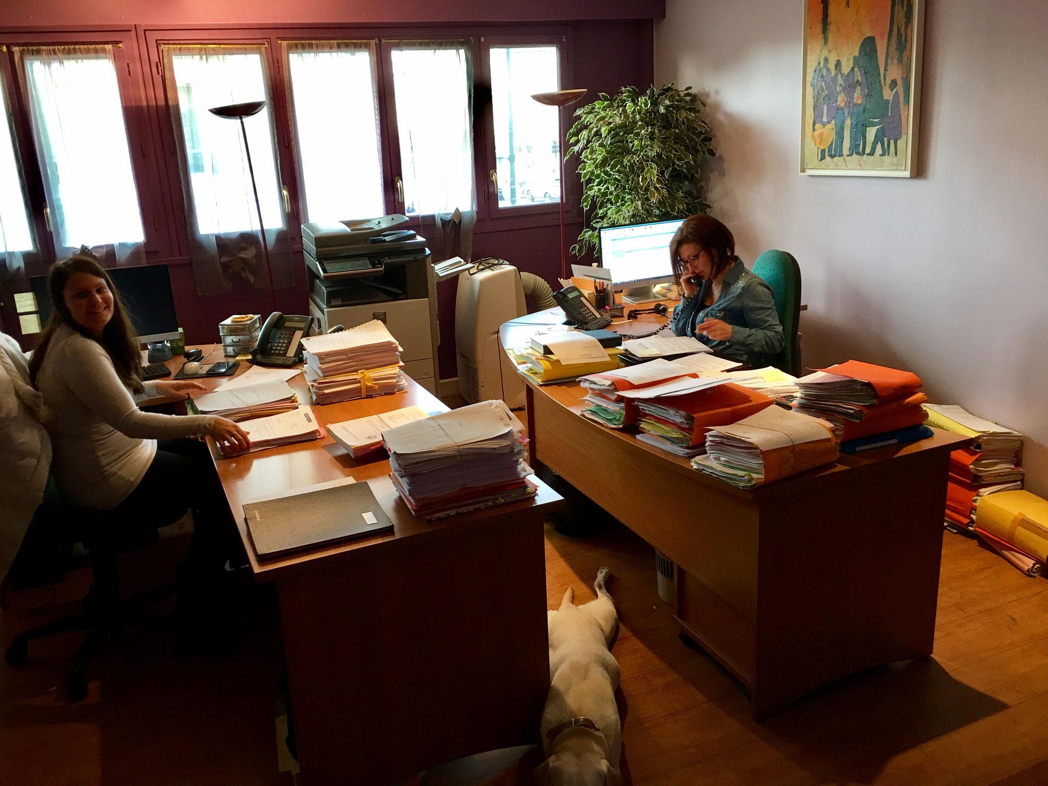 accueil site internet du cabinet d 39 avocats de chelles de nardi joly lebreton. Black Bedroom Furniture Sets. Home Design Ideas