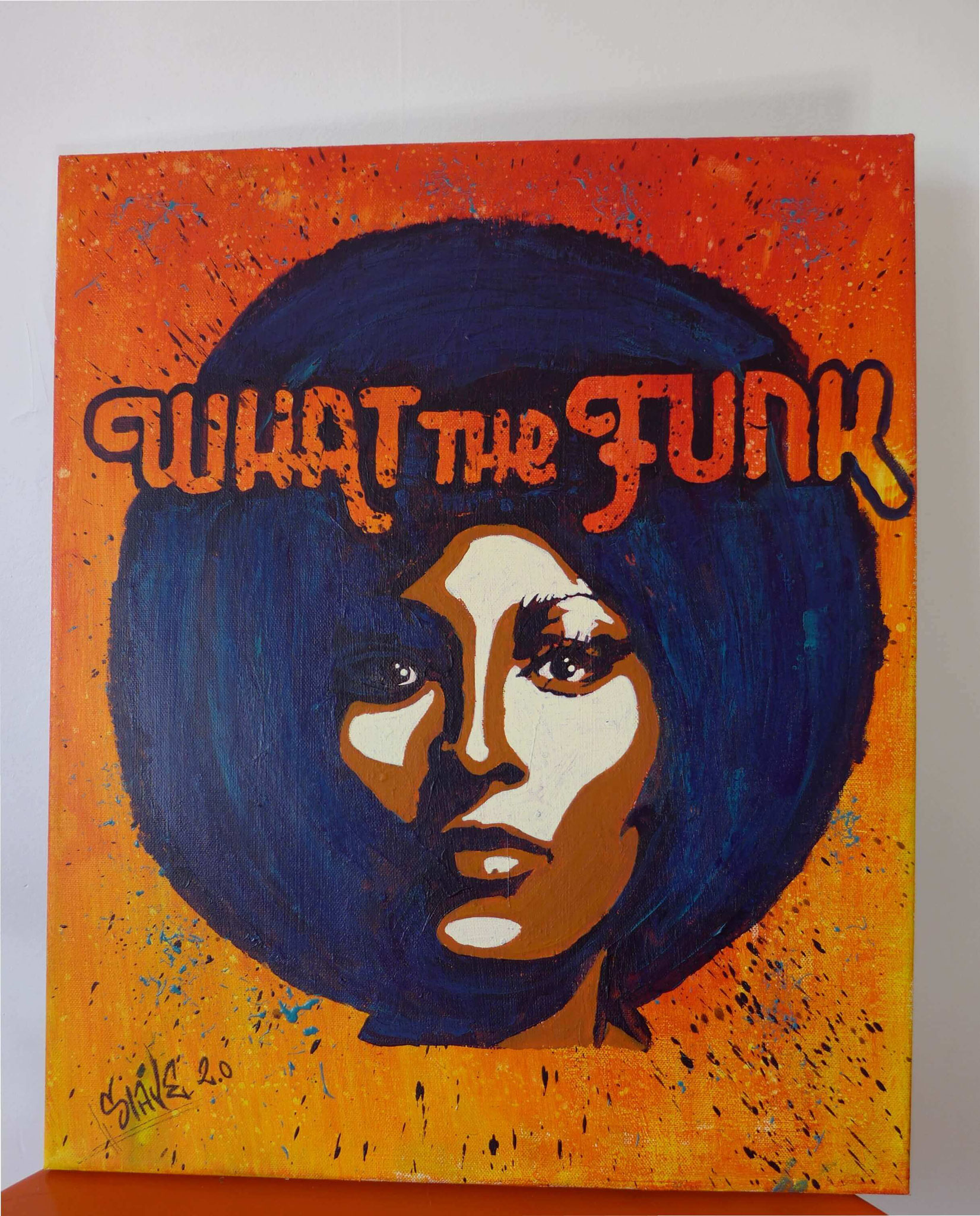 What the funk street art tableau par Slave 2.0