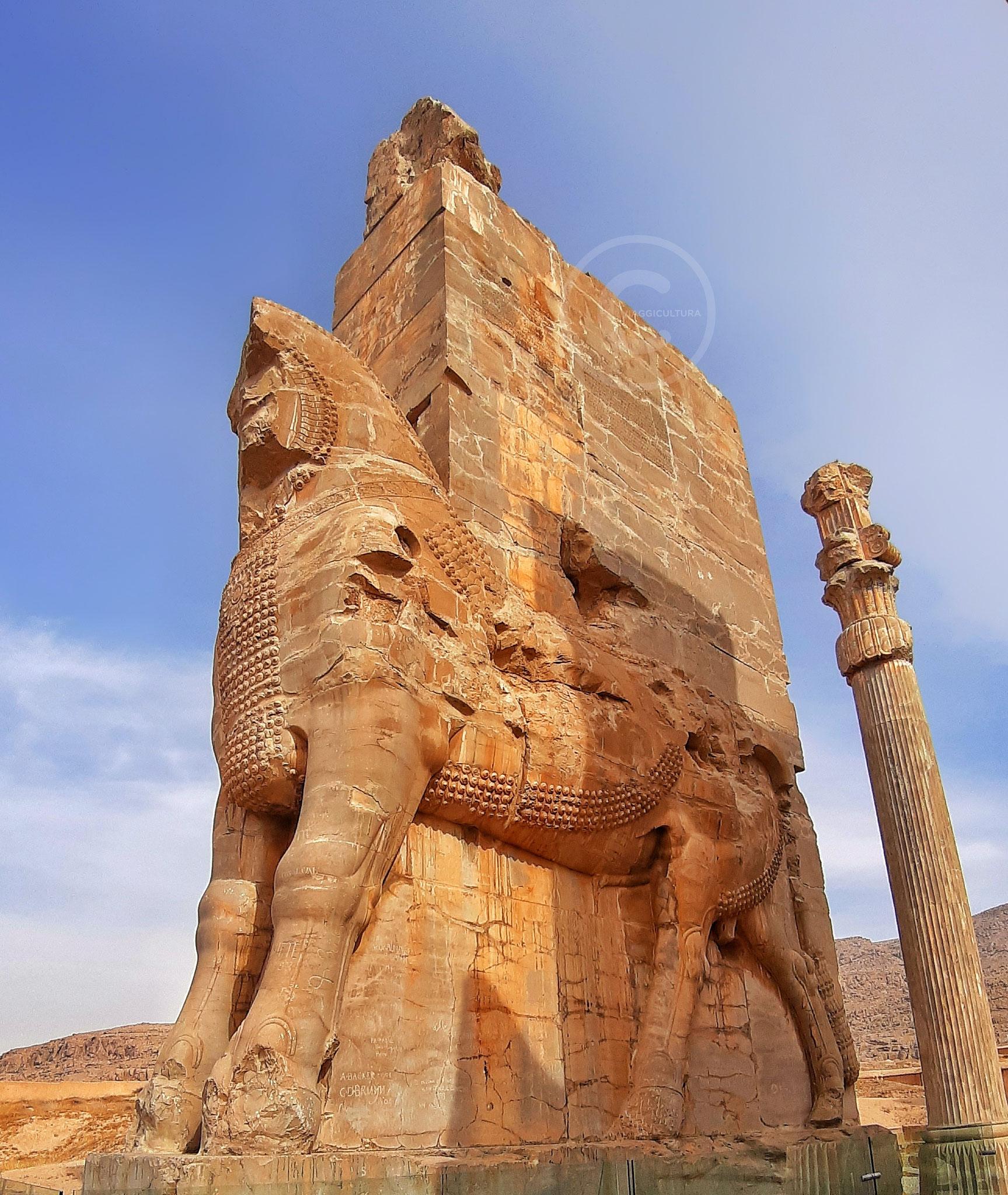 Pilastro dei propilei della Porta di Tutte le Nazioni, Persepoli (Iran)