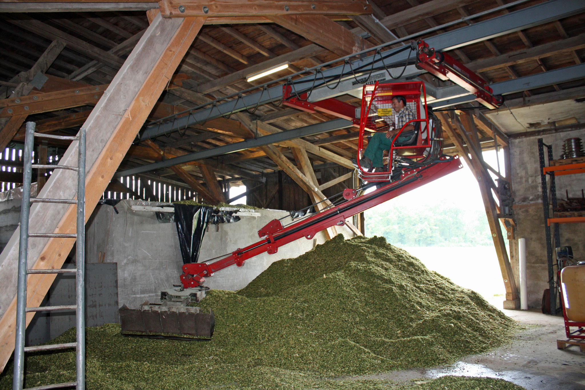in the barn: maize is filled in the silos