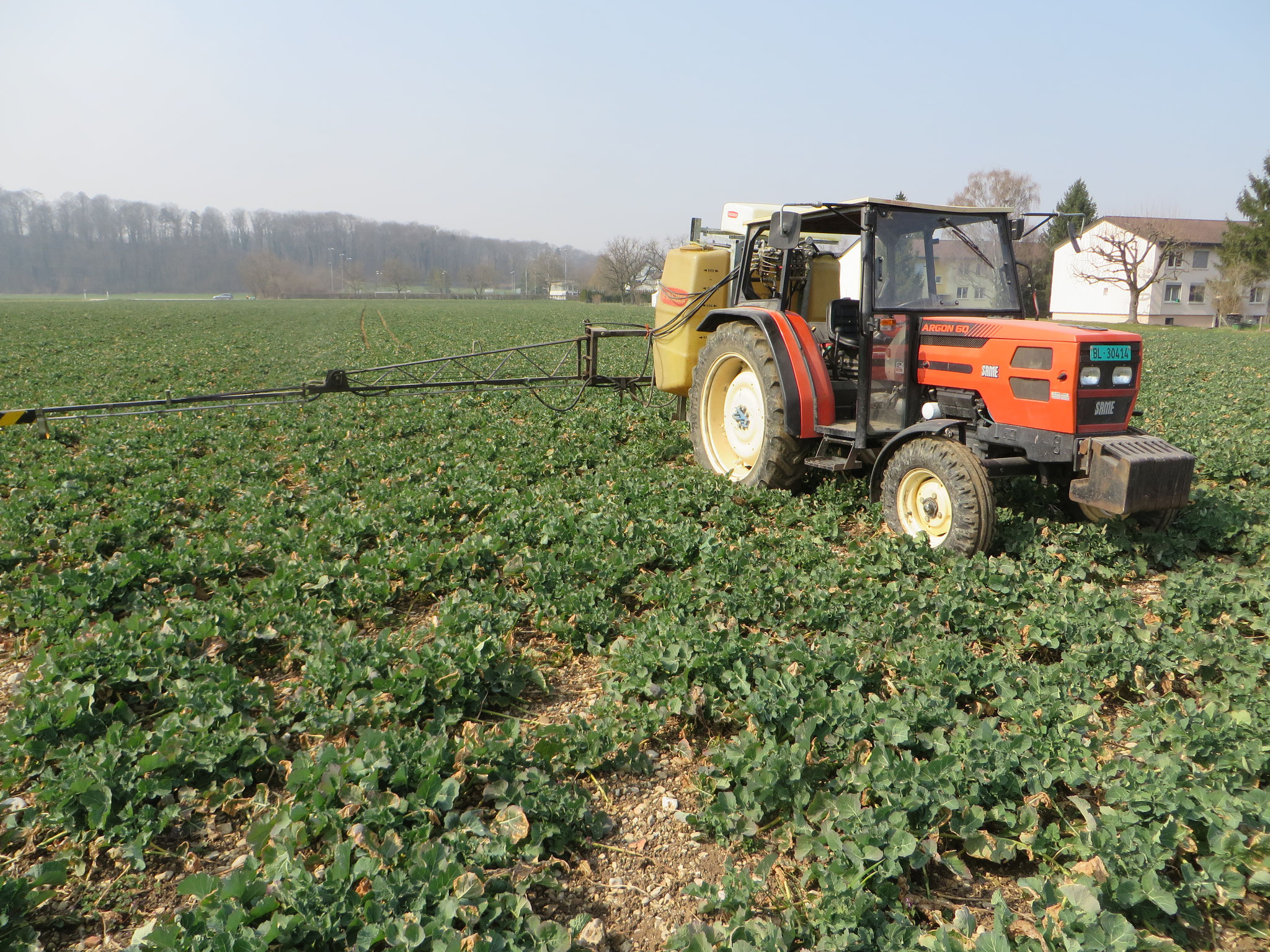 our label IPSuisse: herbicide is allowed. Insecticide and fungicide are forbidden