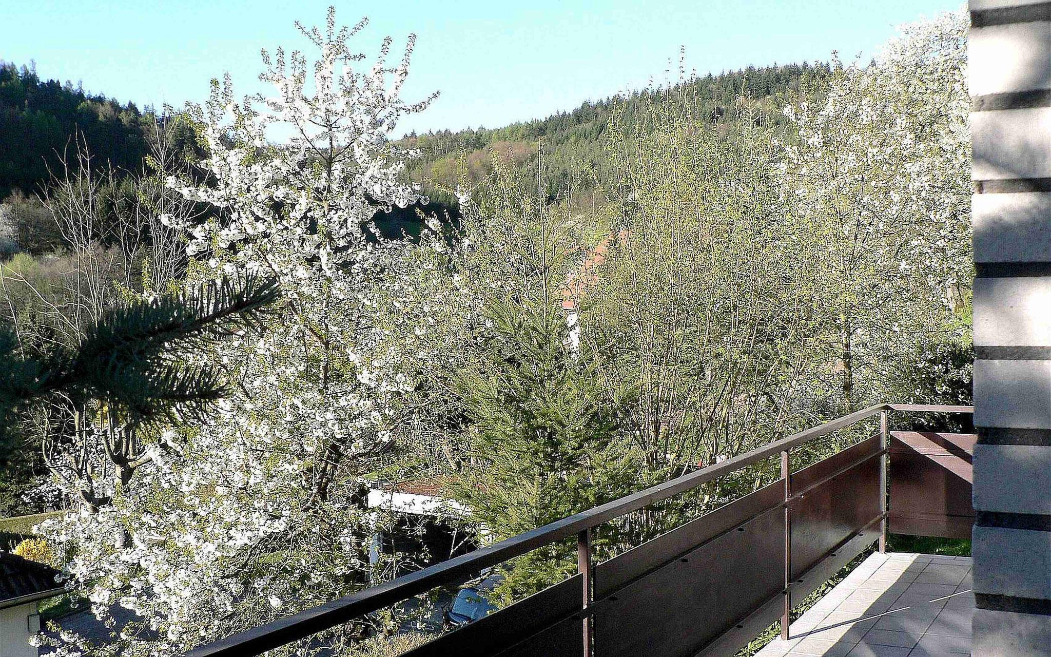 Wohnzimmer Balkon Blick nach Nordwest