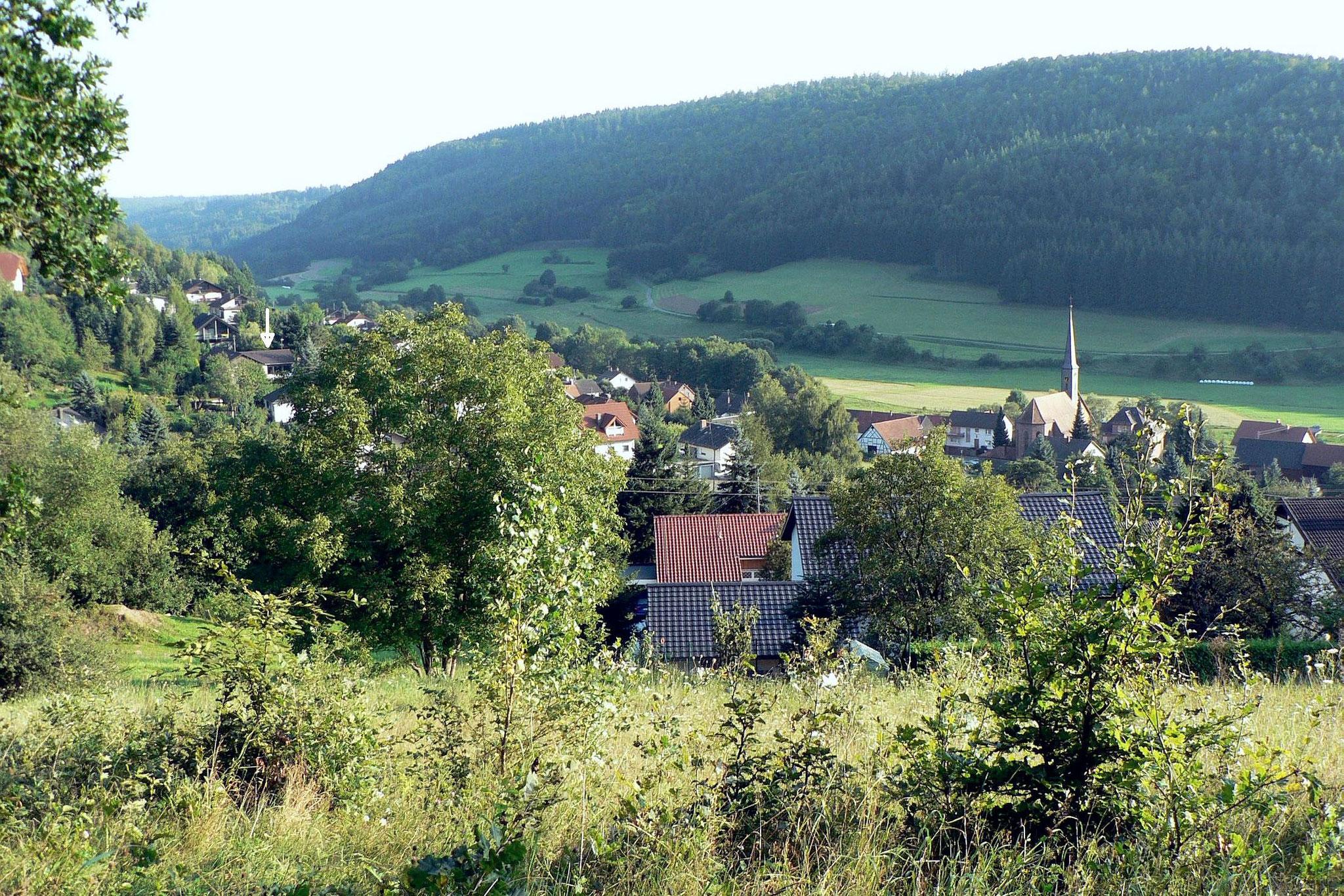 Blick nach Osten von der Hornbacher Steige