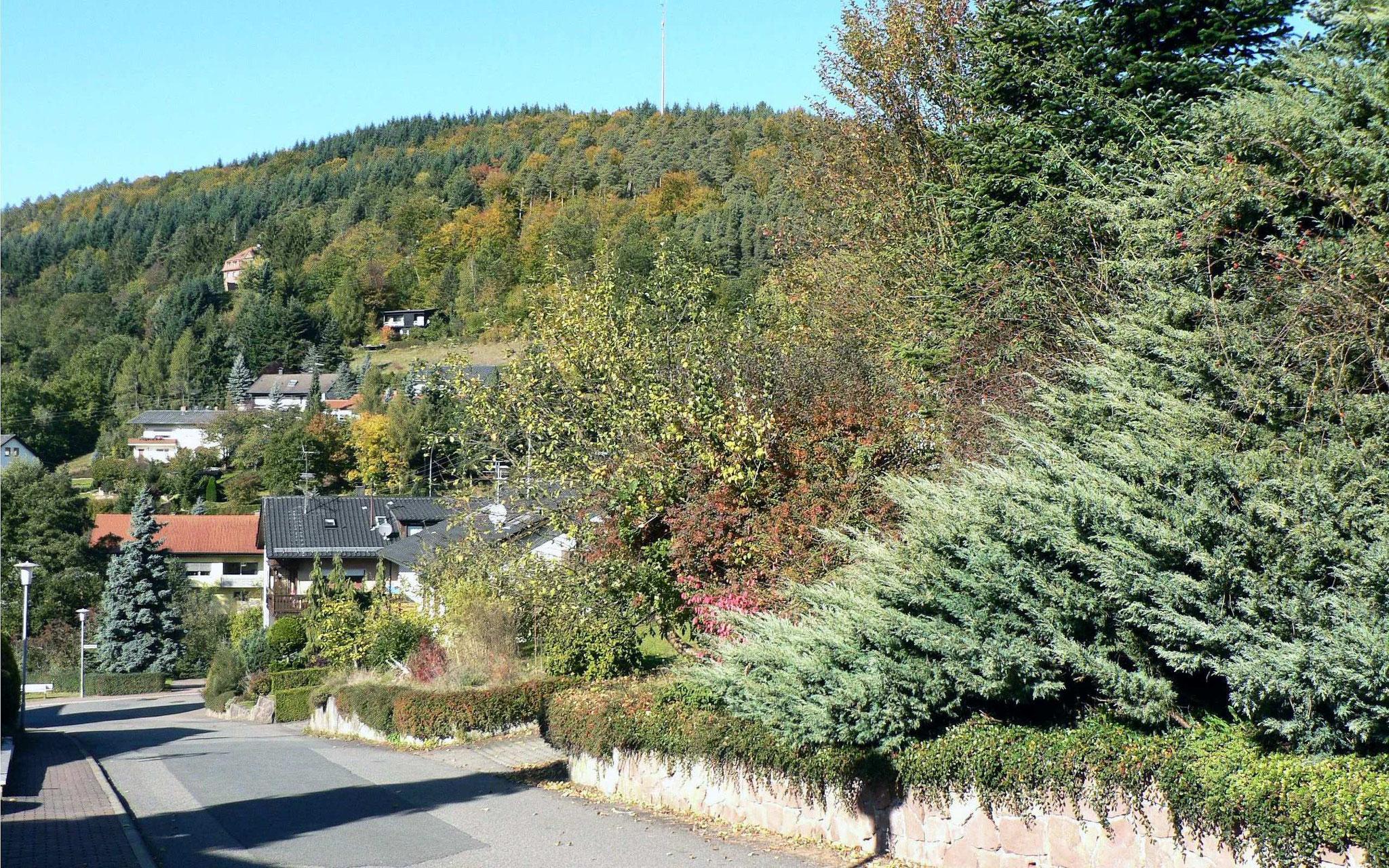 am Grundstück Sonnenstraße 5 Blick zum Mühlberg nach Westen