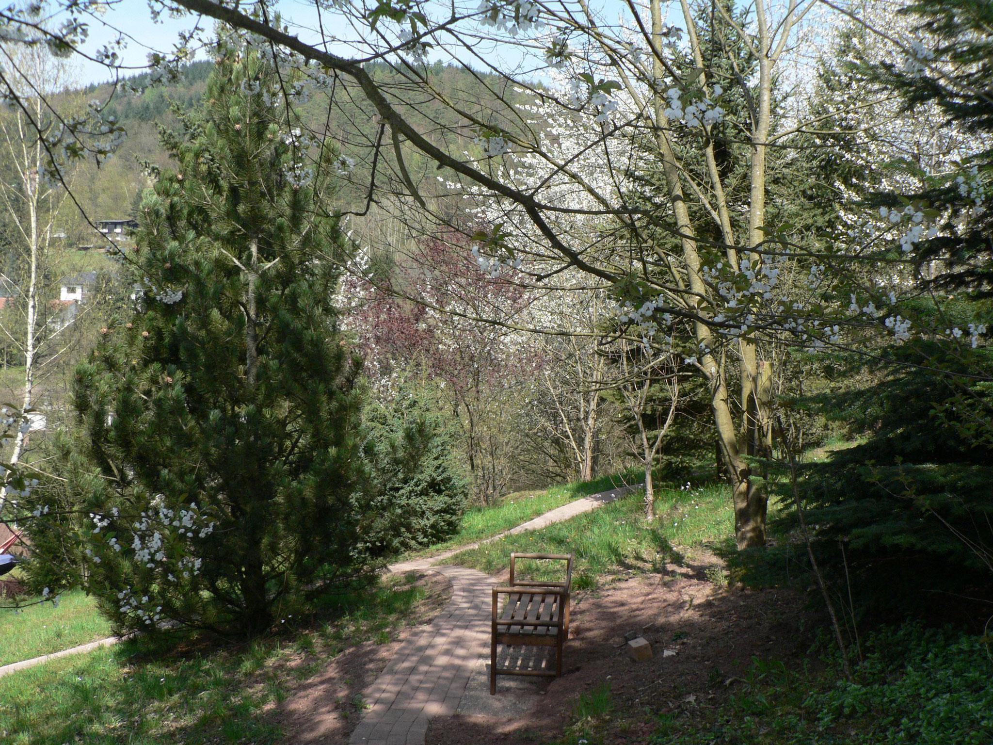 Vom Grundstück (Park) Blick auf den Mühlberg nach Westen