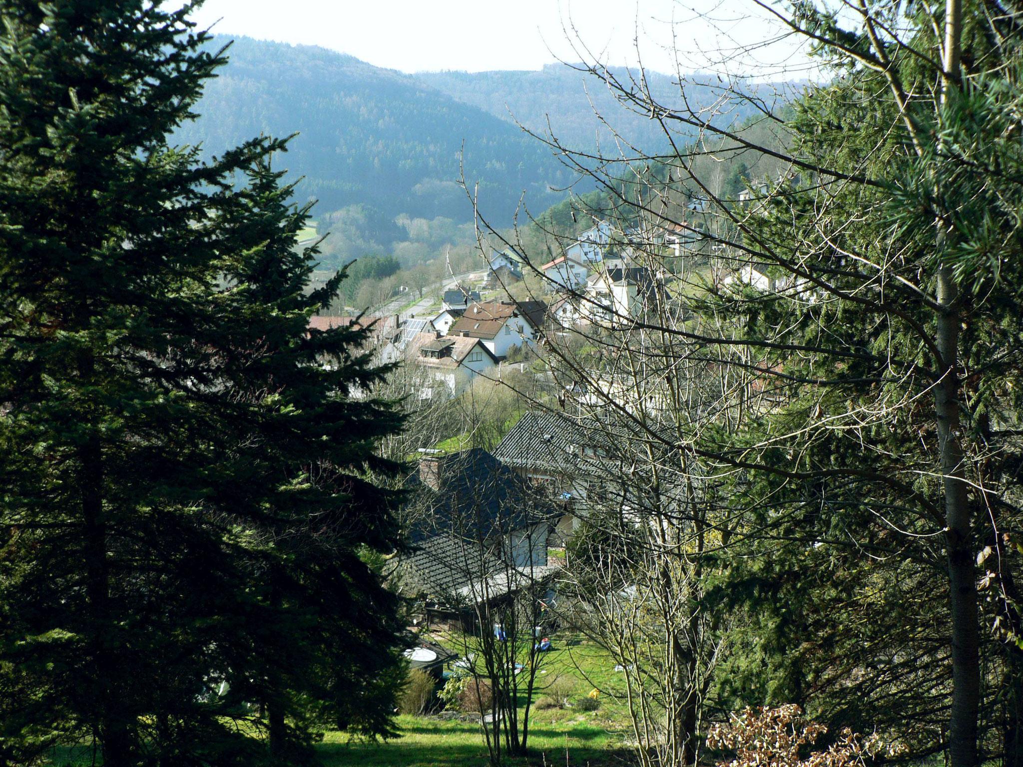 Blick vons der Blockhütte nach Westen ins Morretal zur Bayerischen Grenze