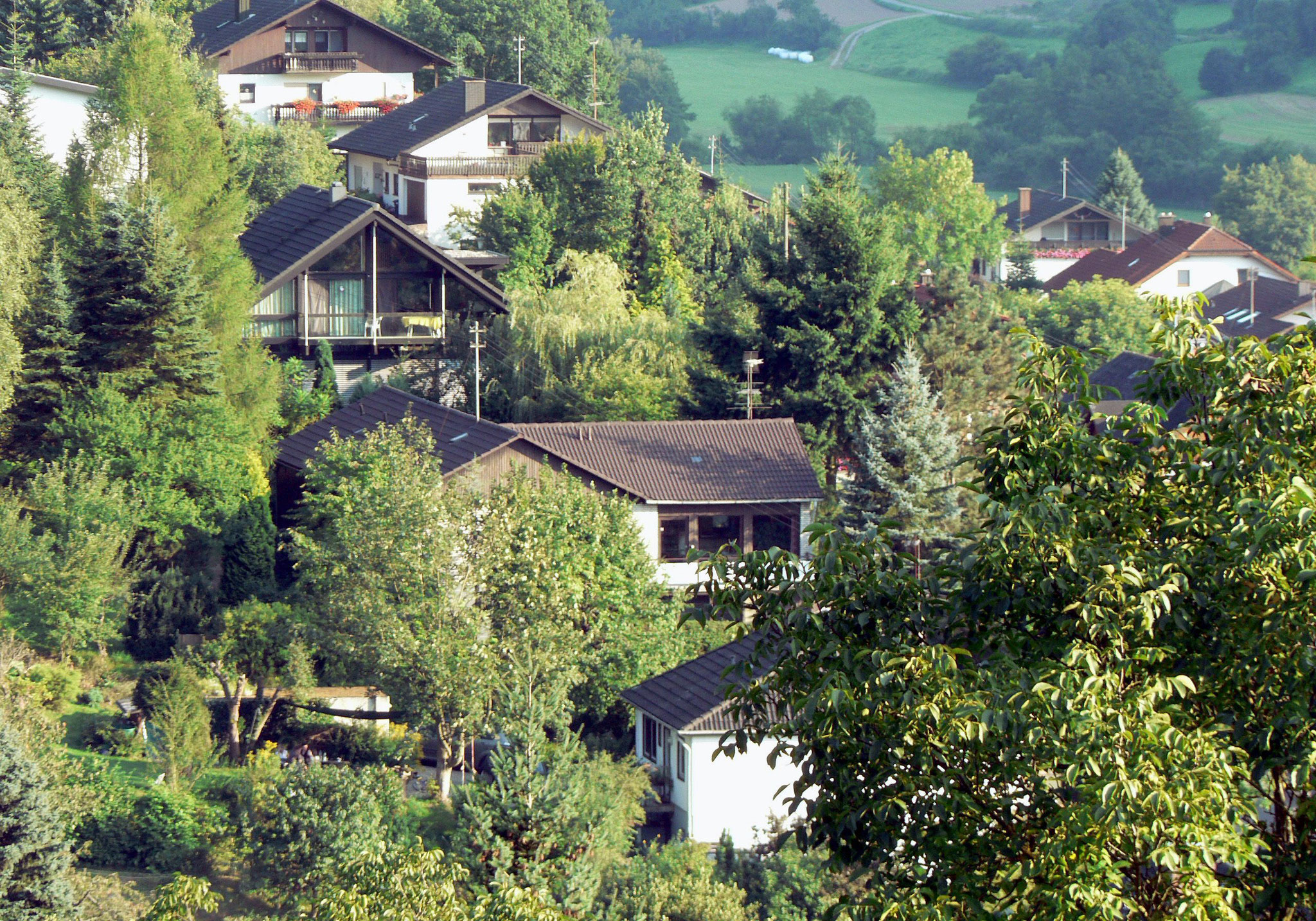 Blick von Hornbacher Steige auf Haus