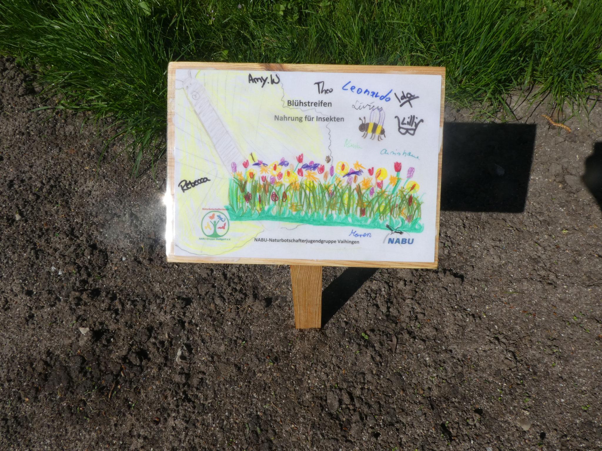 Blühstreifentafel im Rohrer Park, M. Ruland