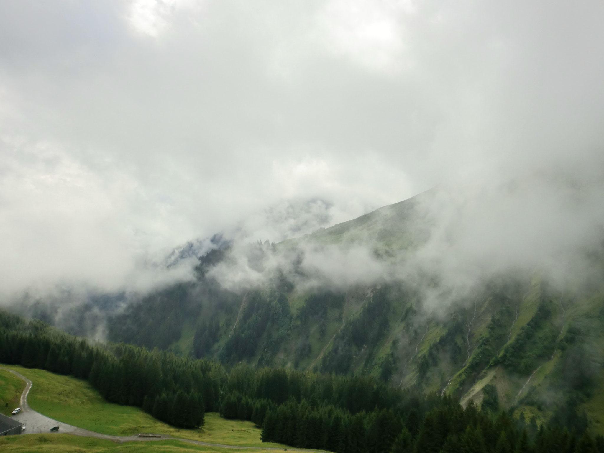 Und nun endlich: Bregenzerwald!