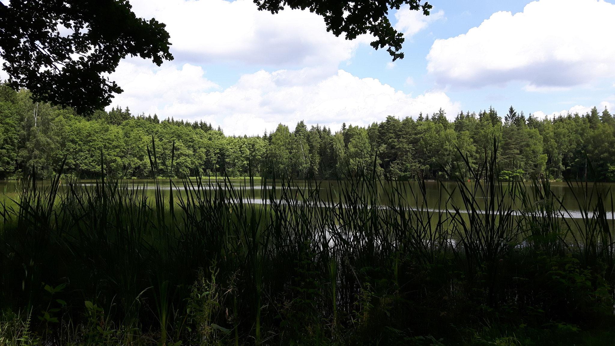 Tirschenreuther Teiche