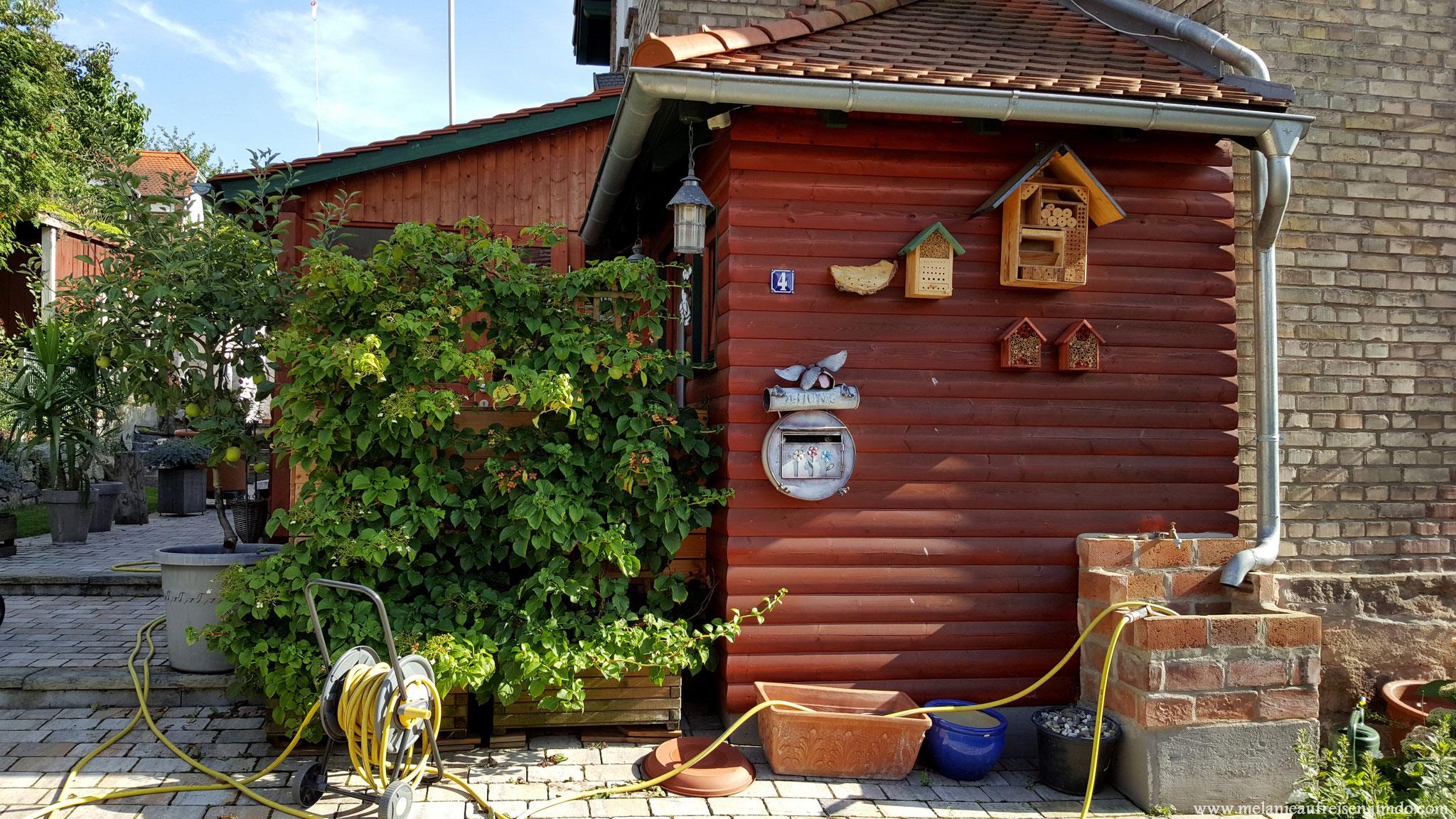 Heckmannsiedlung - Insektenhotel