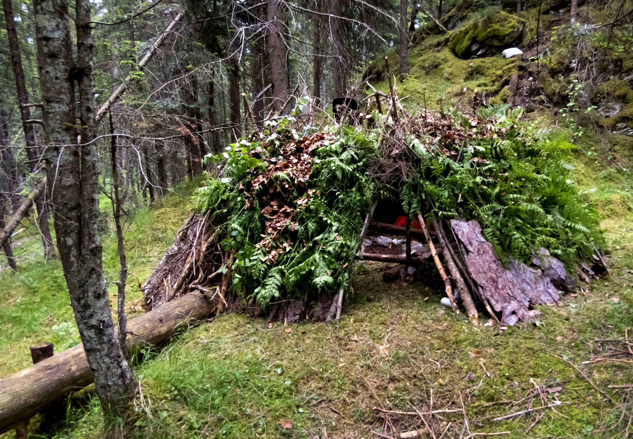 Survival - (Über)Leben in der Wildnis