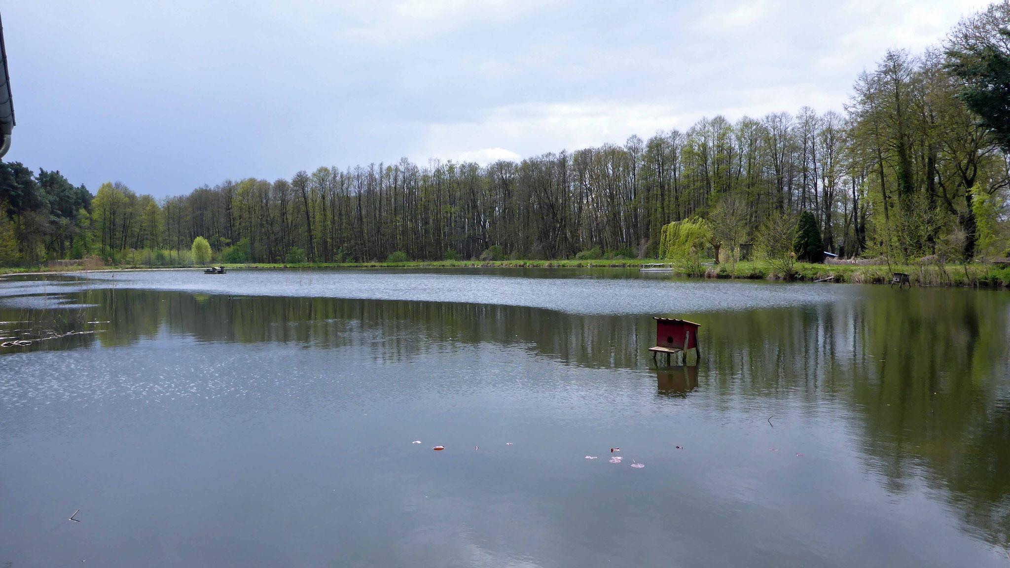 am idyllischen Fischteich.