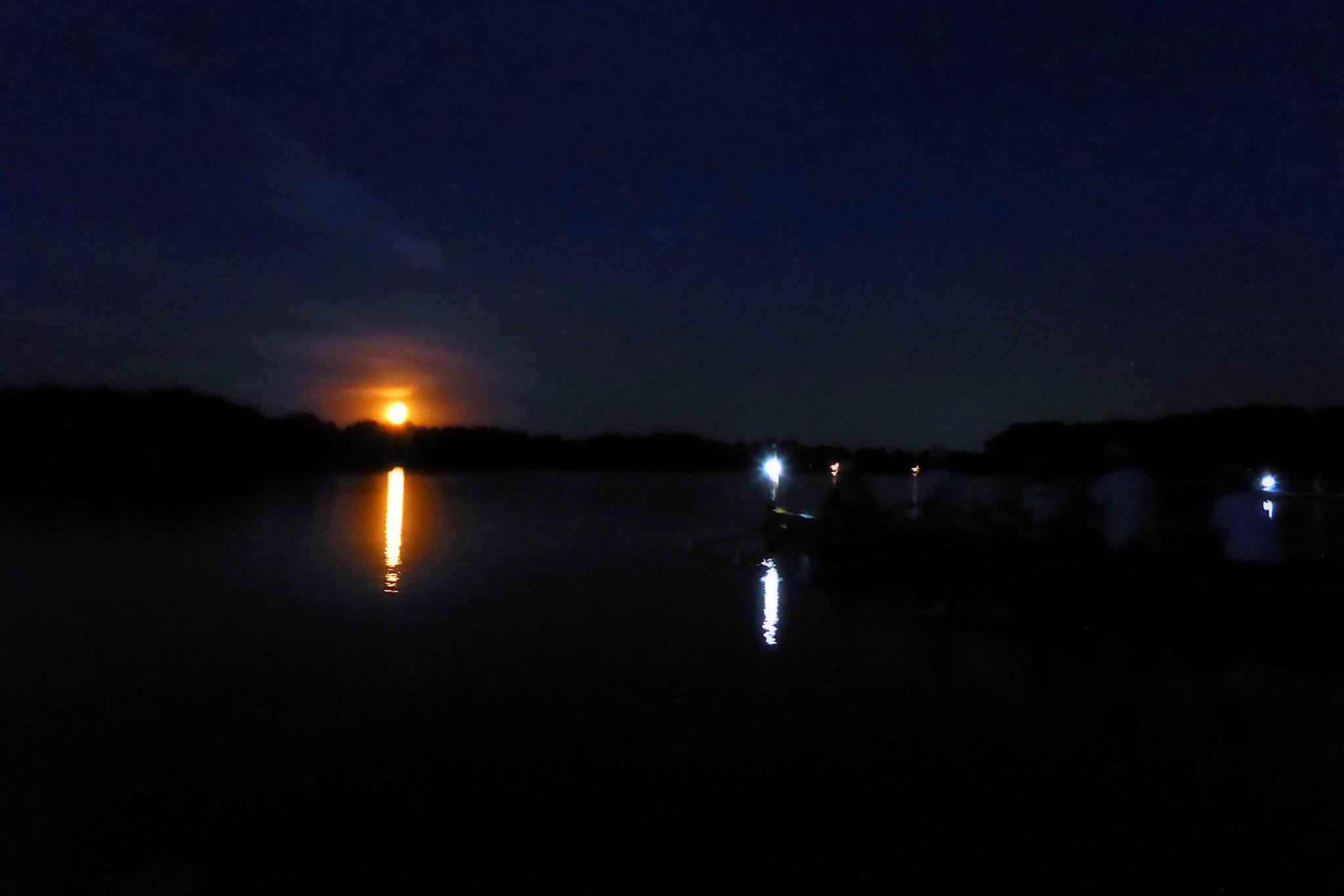 auf dem Ruppiner See.