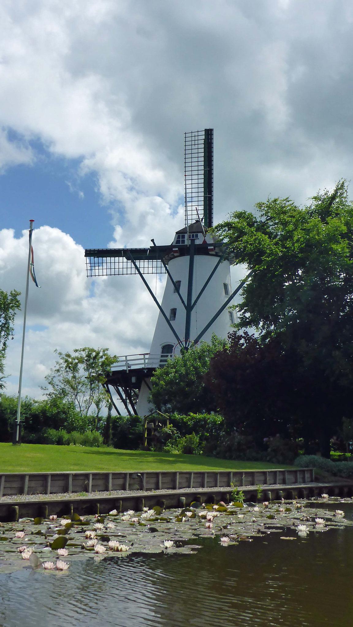 Die schönste Mühle