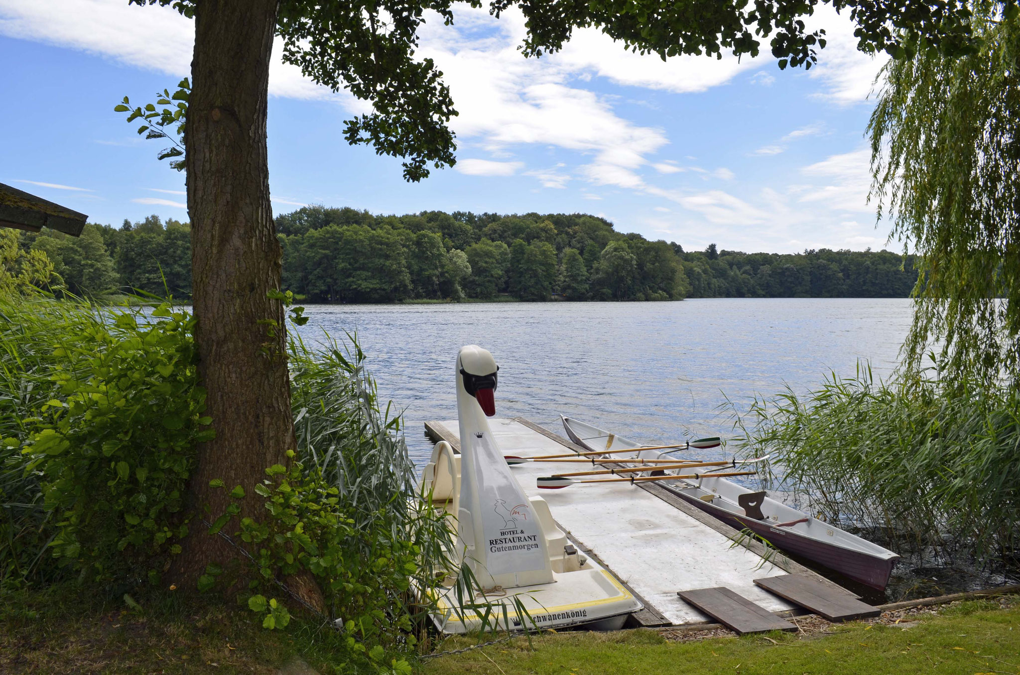 Schwan und Ruderboot warten schon auf Gäste.