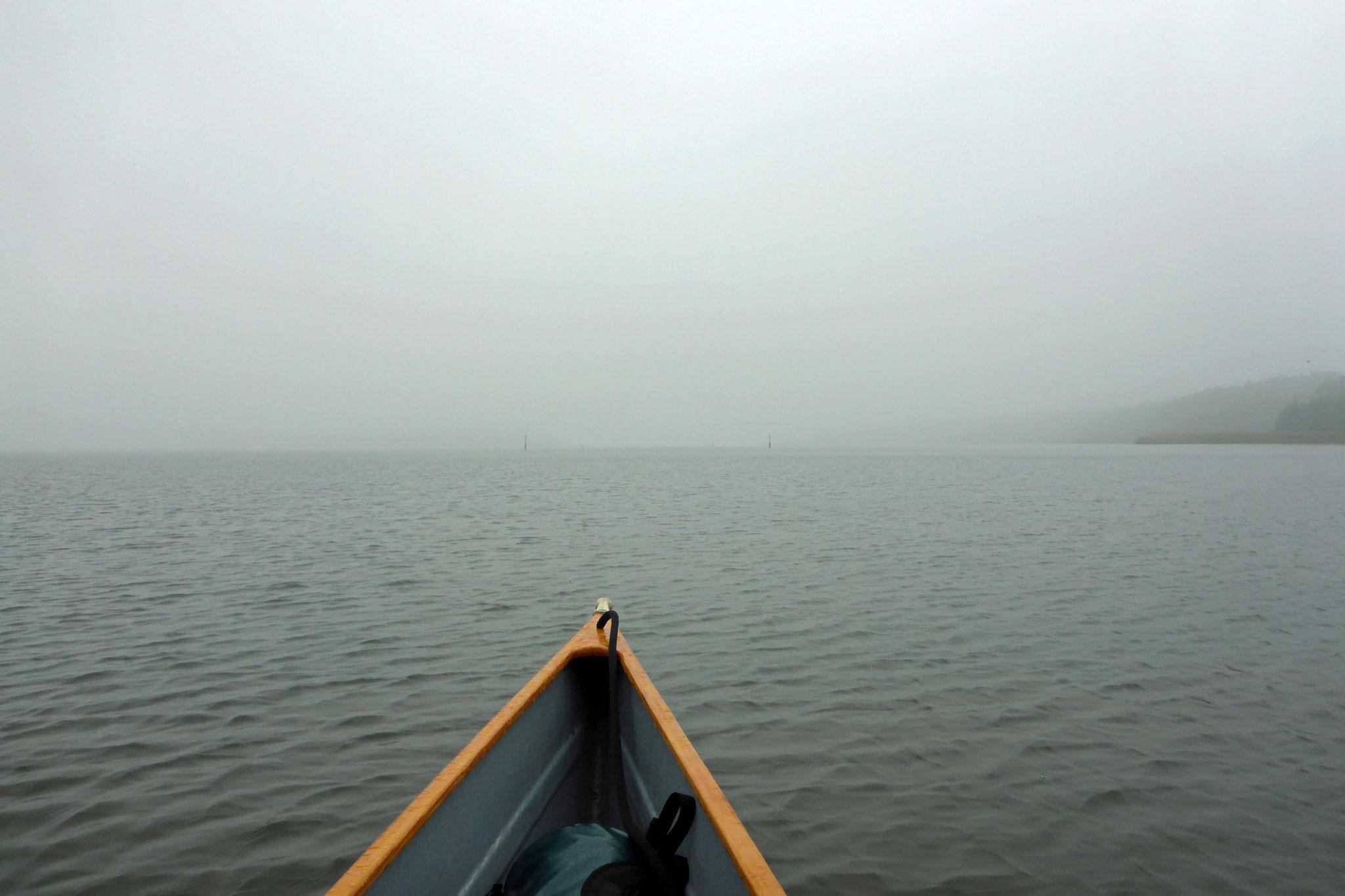 Der Bützsee im Nebel.