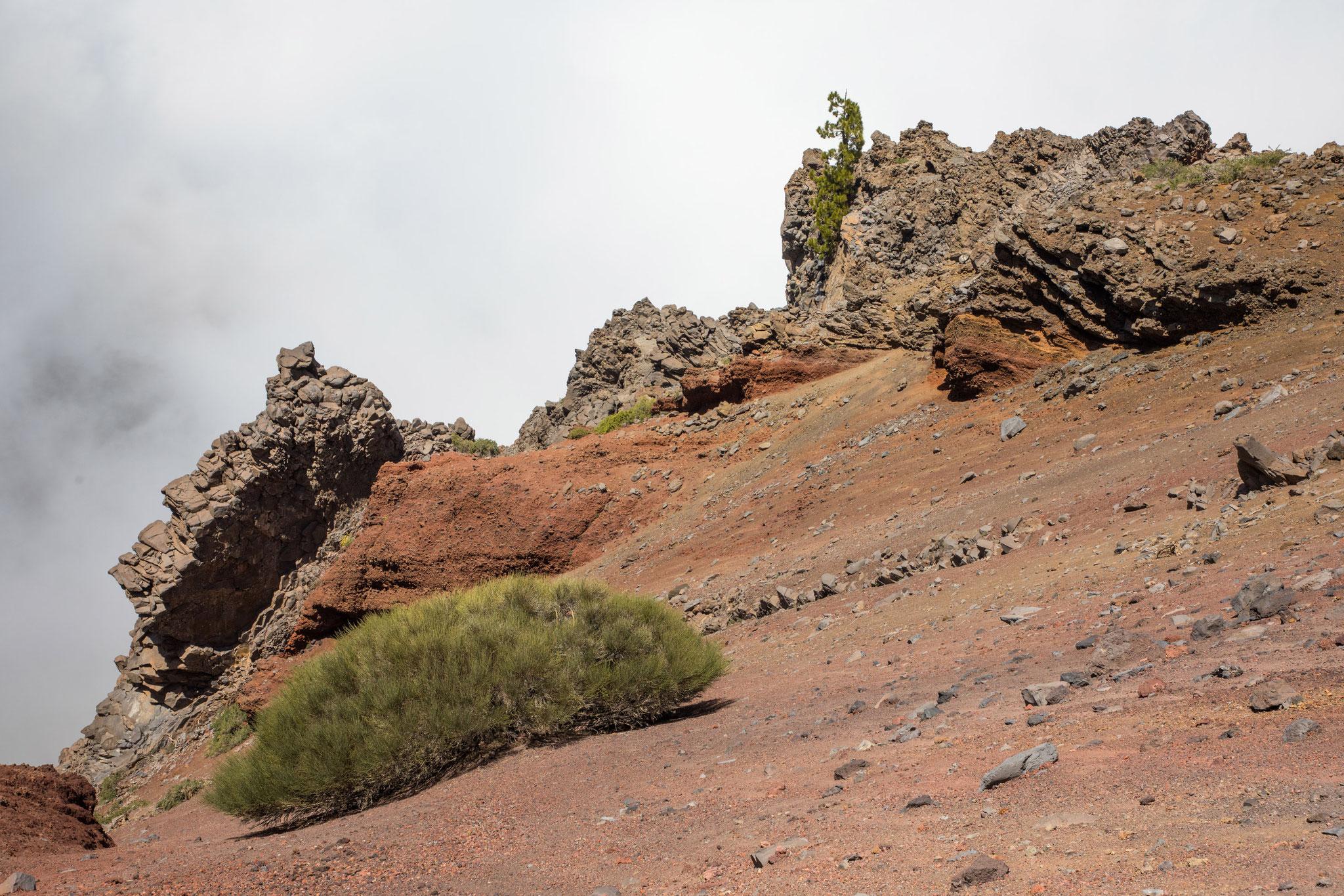Wanderung am Kraterrand vom Roque de las Muchachos zum Pass Dellogada de Franceses