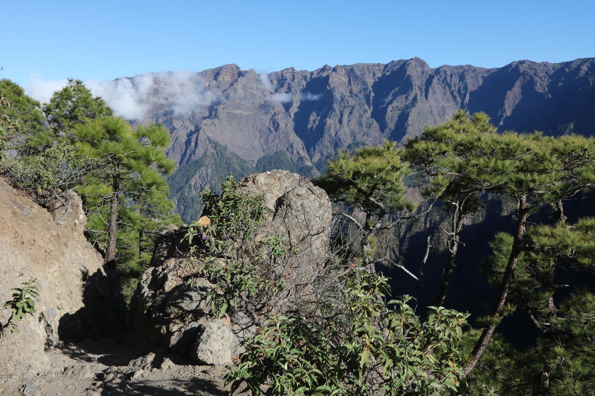 Caldera de Taburiente: Wanderung vom Mirador de La Cumbrecita auf den Pico Bejenado
