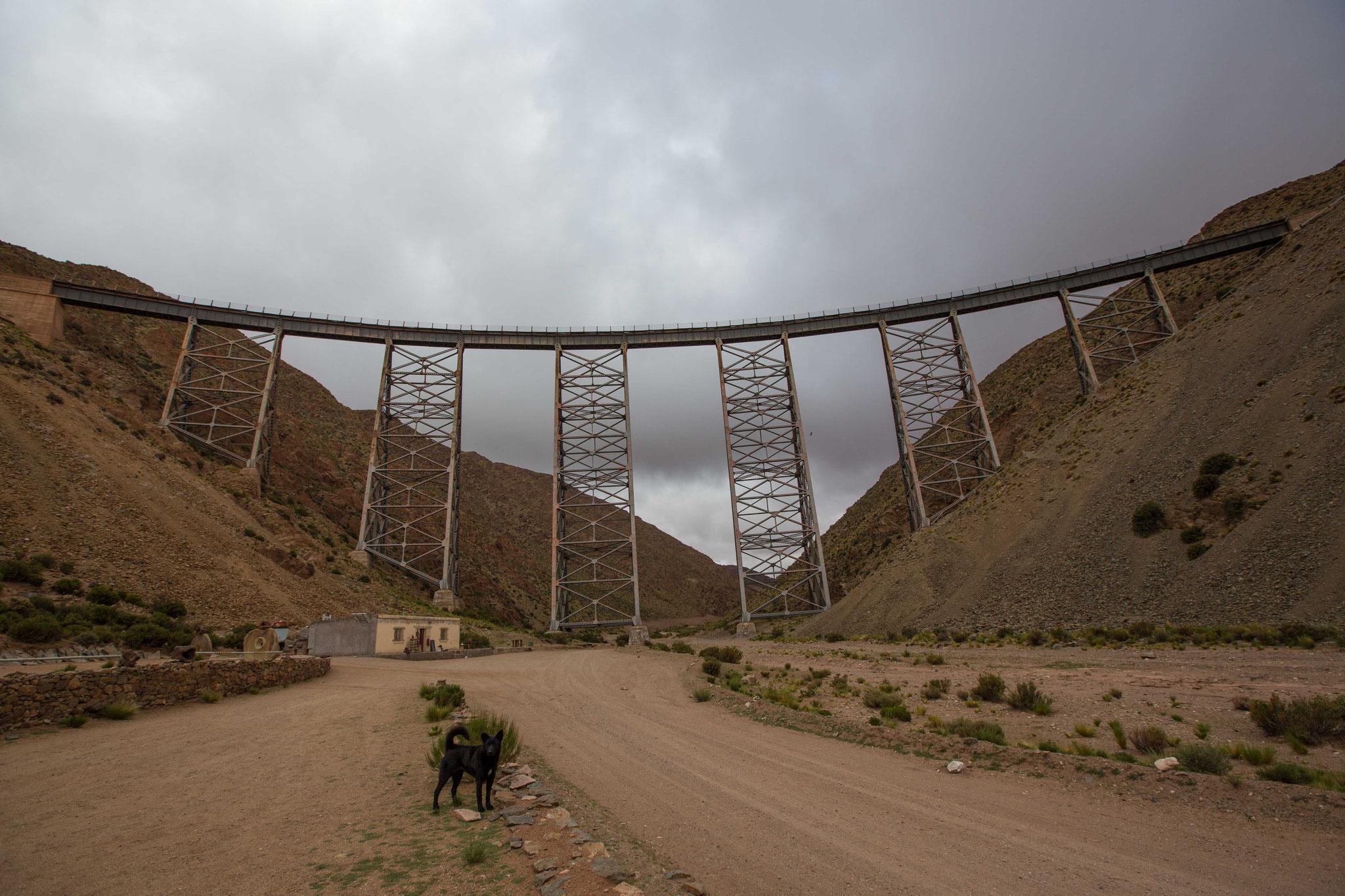 Viaducto La Polvorilla (4200m) - Tren de Las Nubes