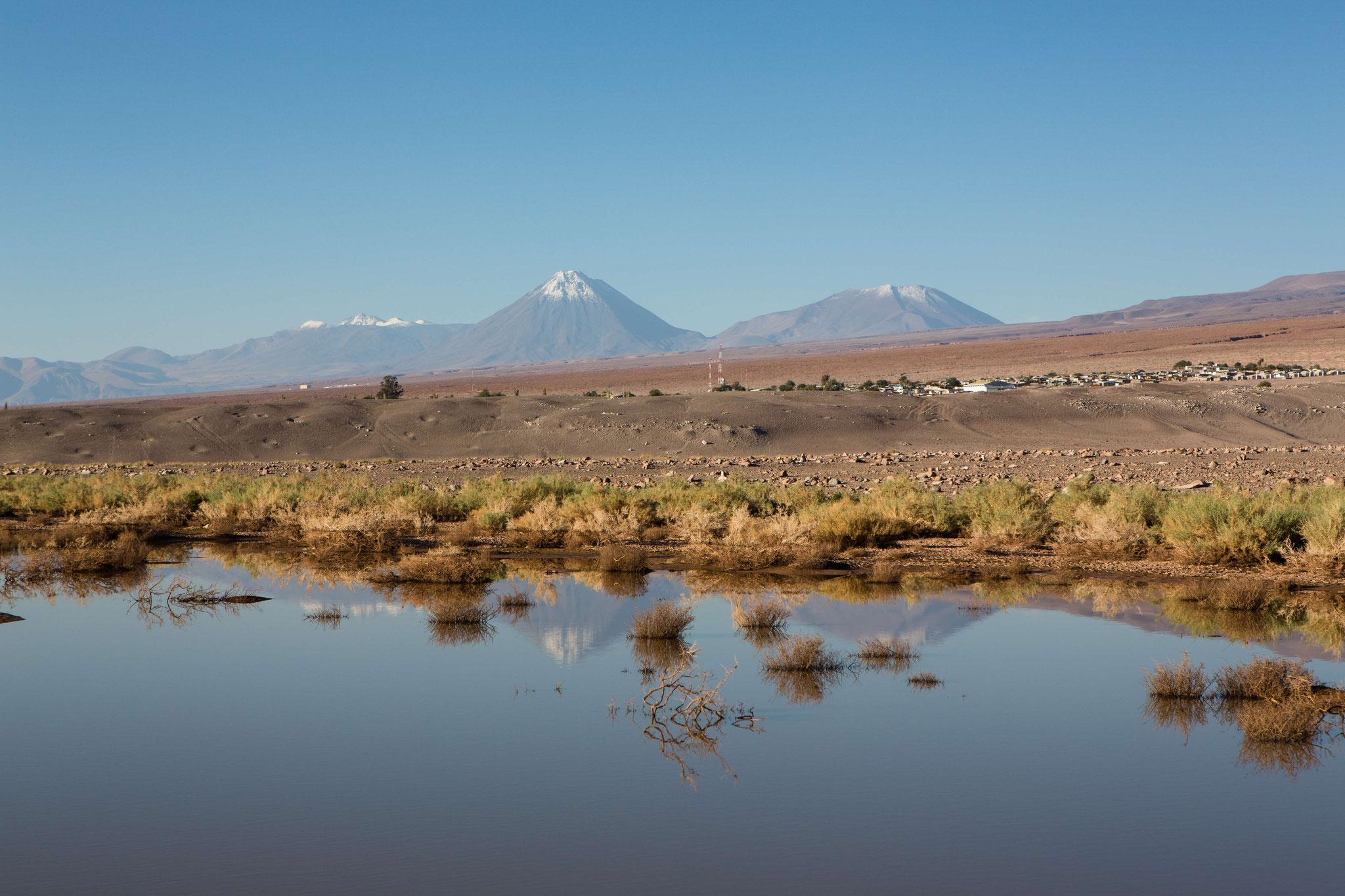 Im Hintergrund der Vulkan Lincancabur, 5920 m