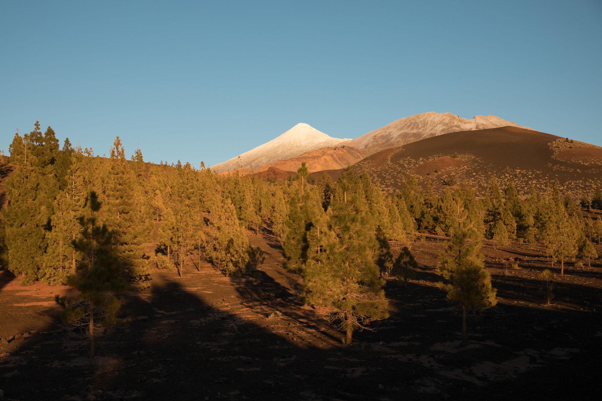 Blick vom Miradaor Samara zum Teide