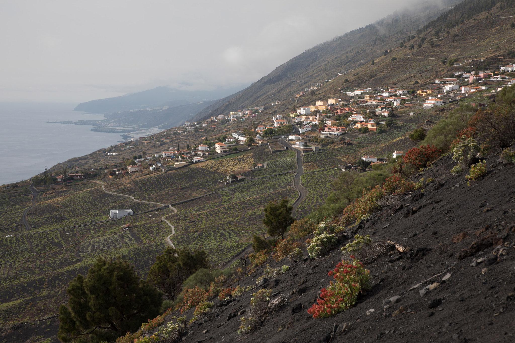 Am Weg zum Volcan de Teneguia - Blick zurück nach Los Quemados