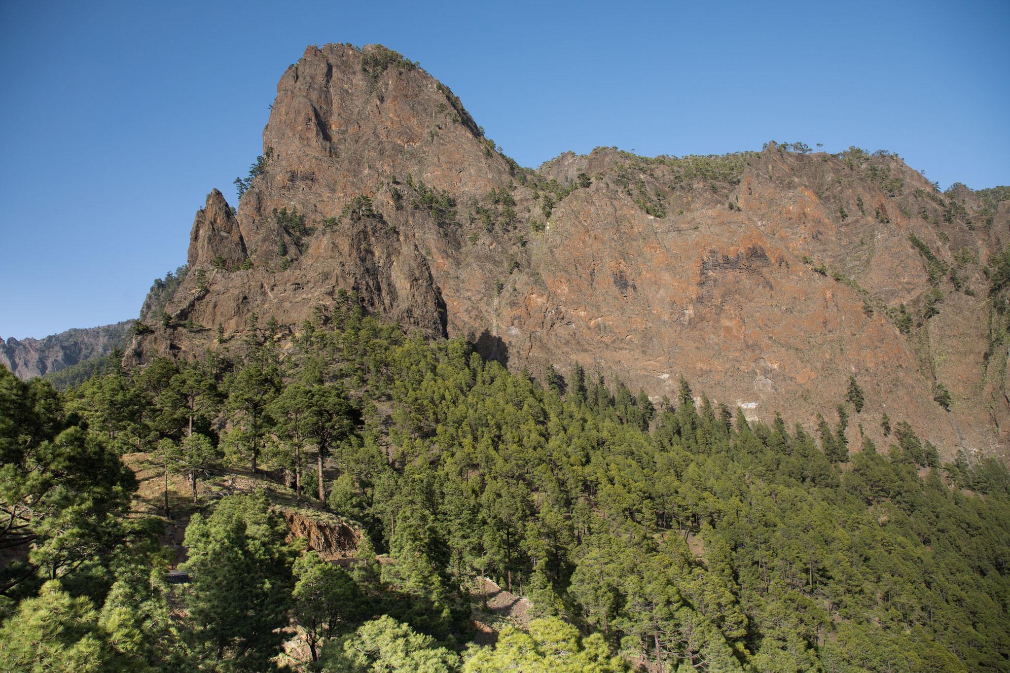 Nochmals Caldera de Taburiente - Wanderung vom Aussichtspunkt La Cumbrecita