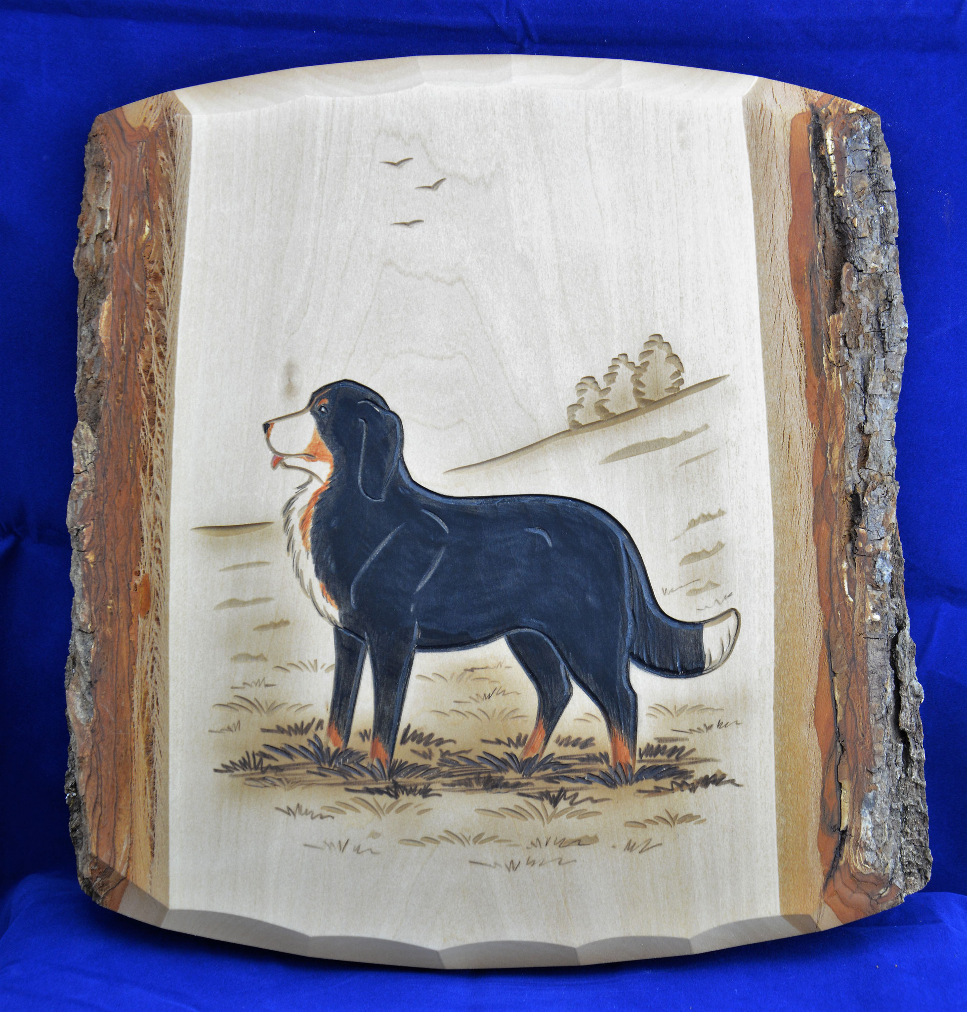07.073.0F Berner Sennenhund stehend
