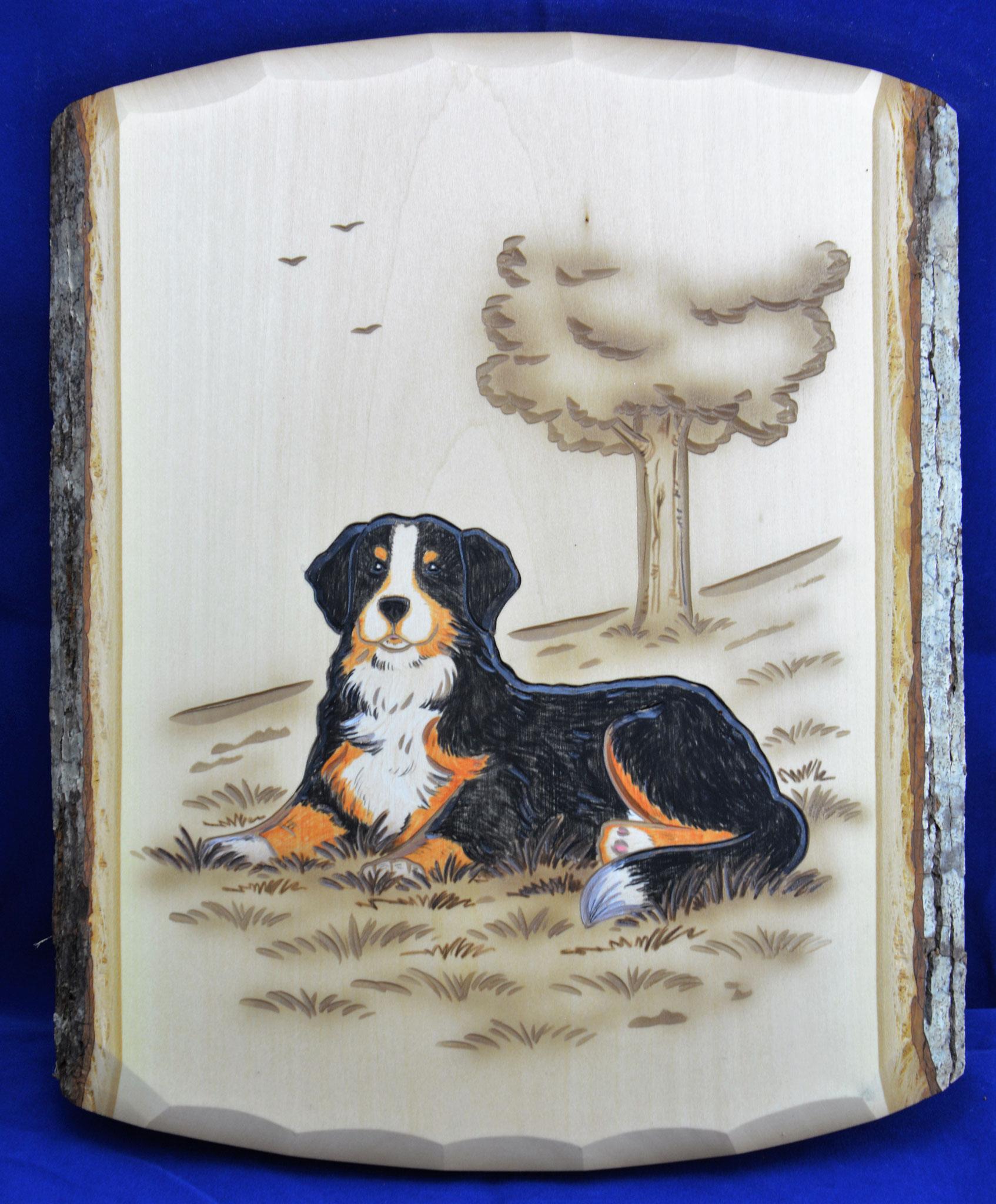 07.072.0F Berner Sennenhund liegend