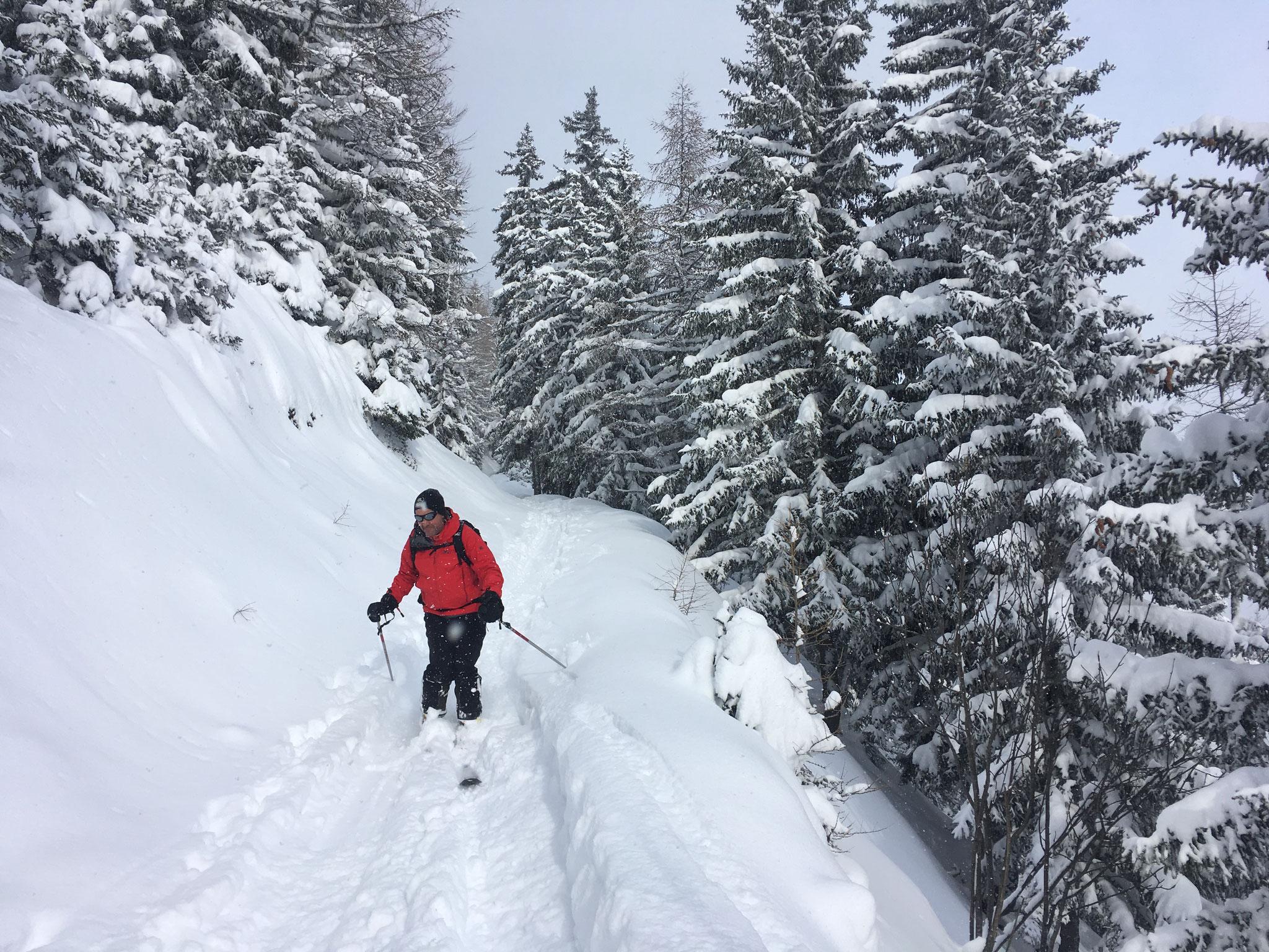 Descente ambiance hivernale en forêt