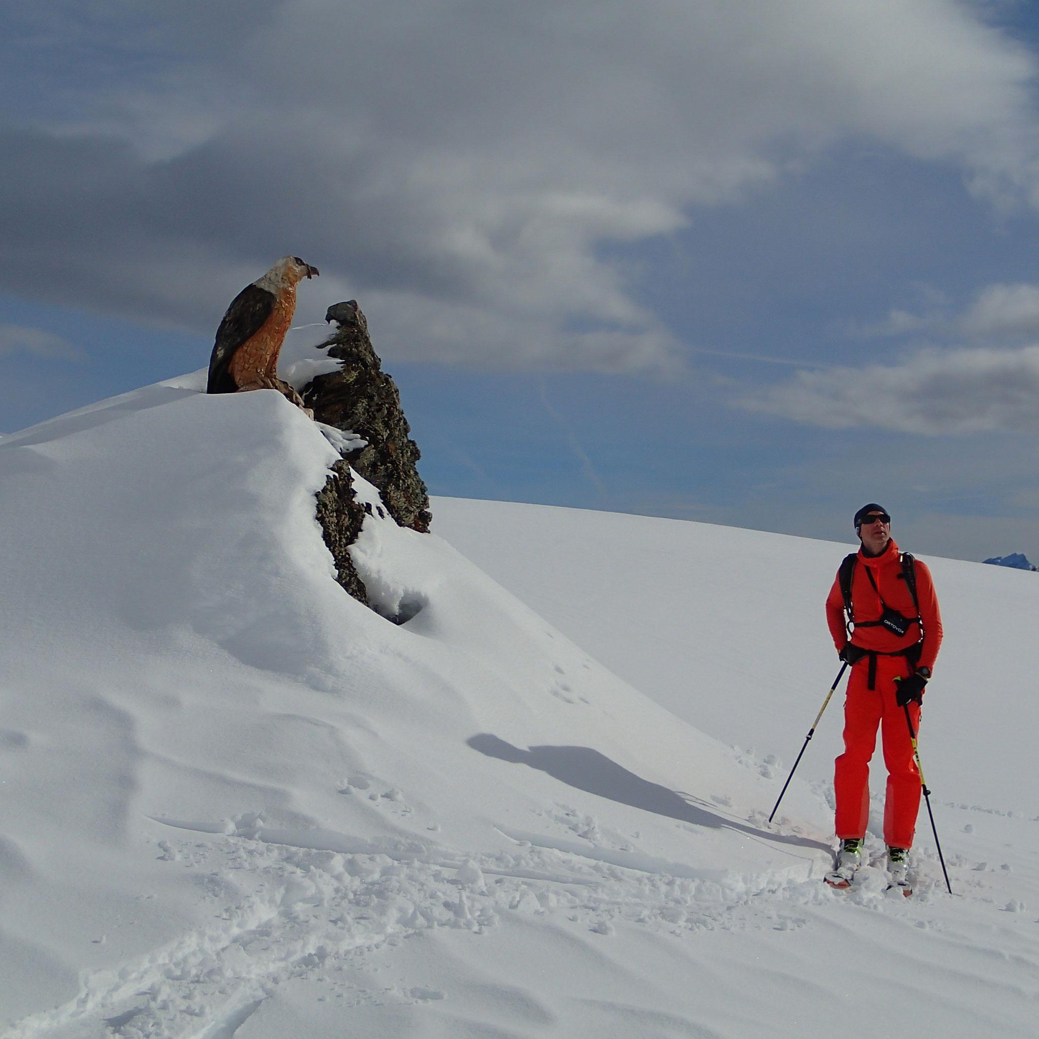 Rencontre avec le sentier alpin