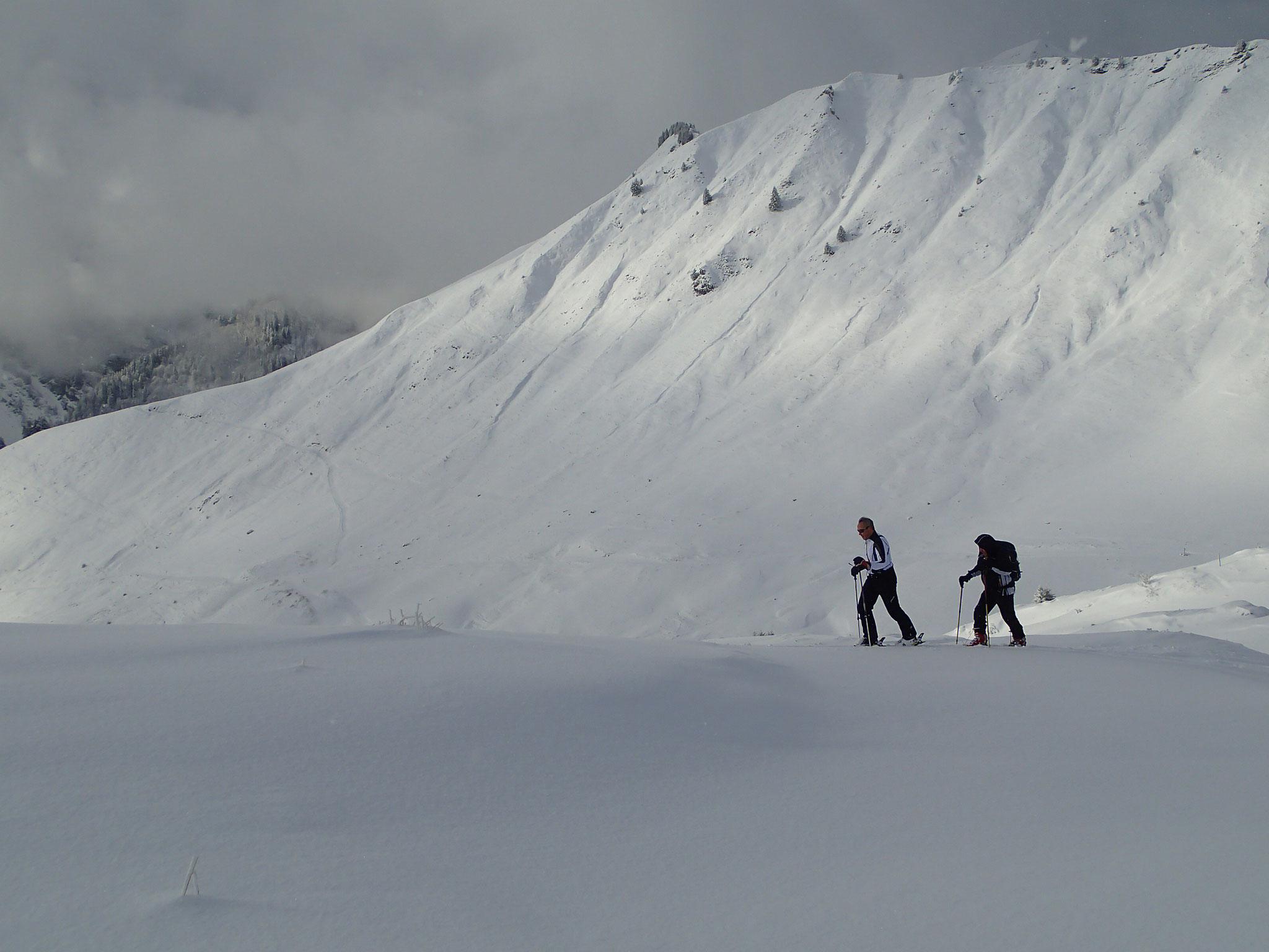 2 frères dans l'Alpe