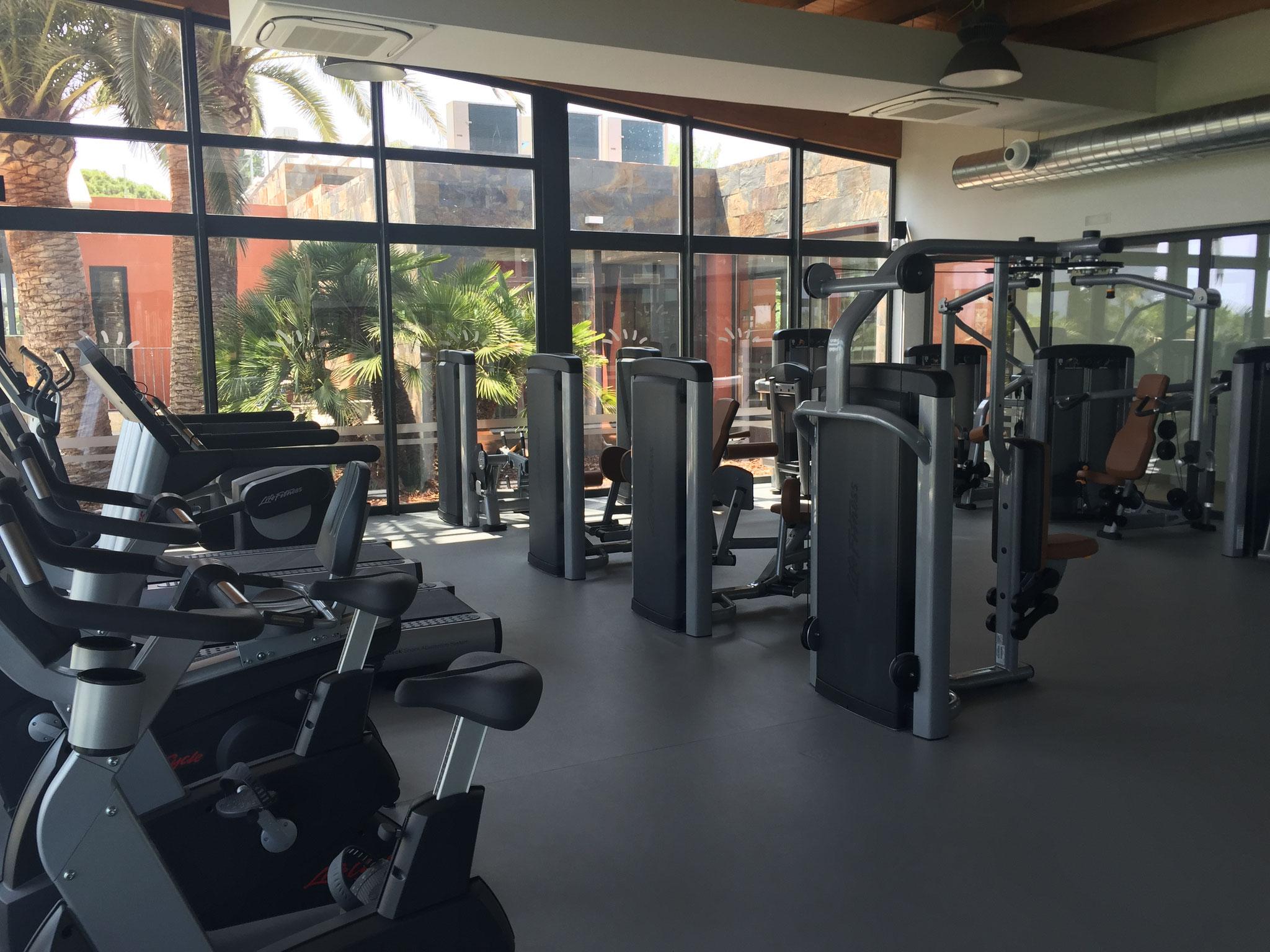 Das Gym (kostenpflichtig)