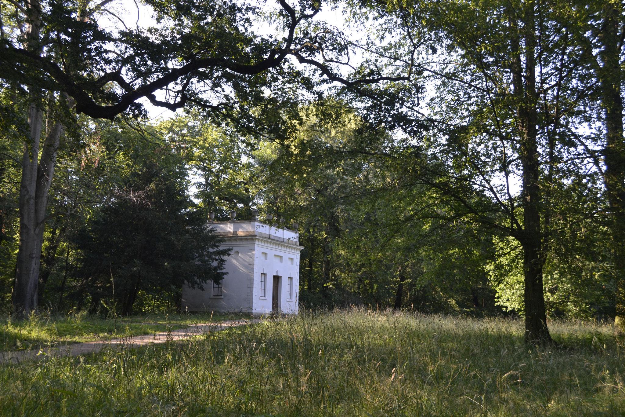 Vasenhaus