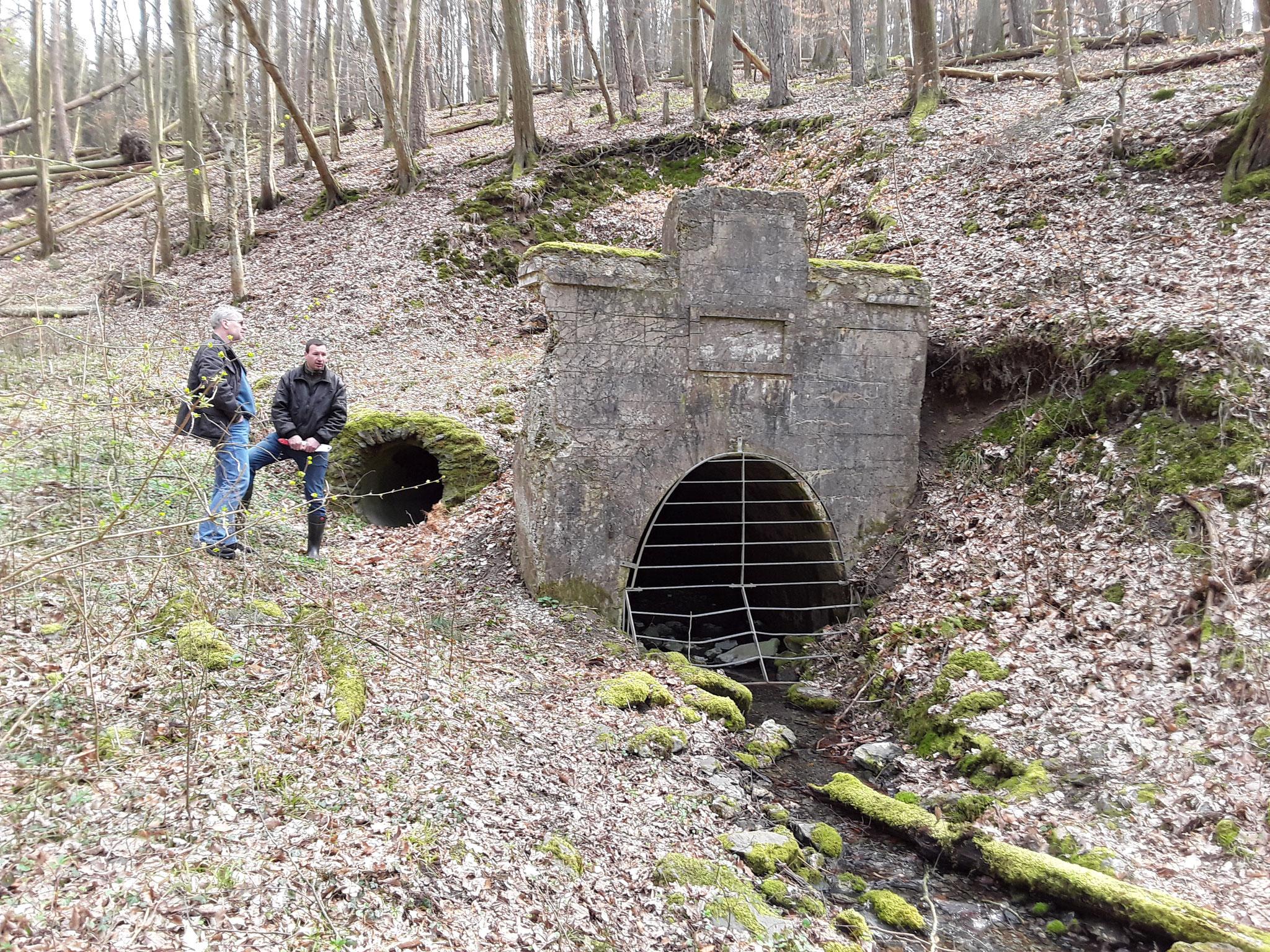 Für die Fledermäuse wurde ein 2. Eingang gelegt, da der Haupt- Stollen nach wenigen Metern eingebrochen ist