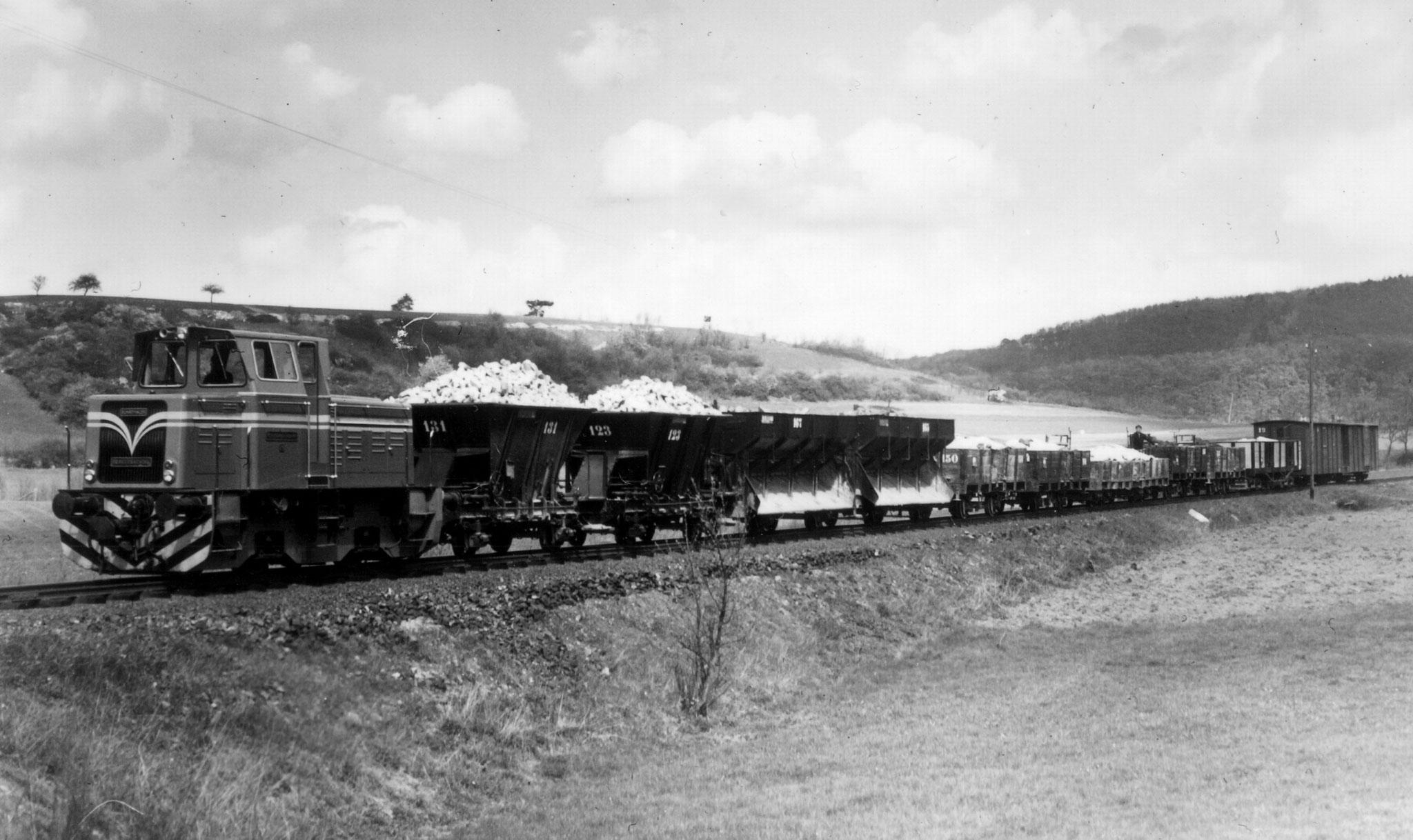 Langer Zug bei Schadeck, am Ende laufen Wagen 19 und ein Gepäckwagen