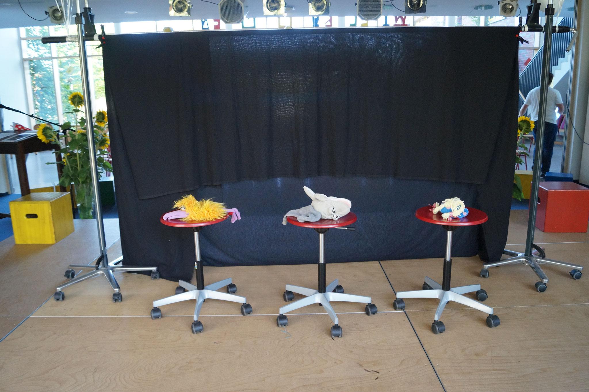 Der Rabe, der Delfin und Zamo - vor Beginn der Show!