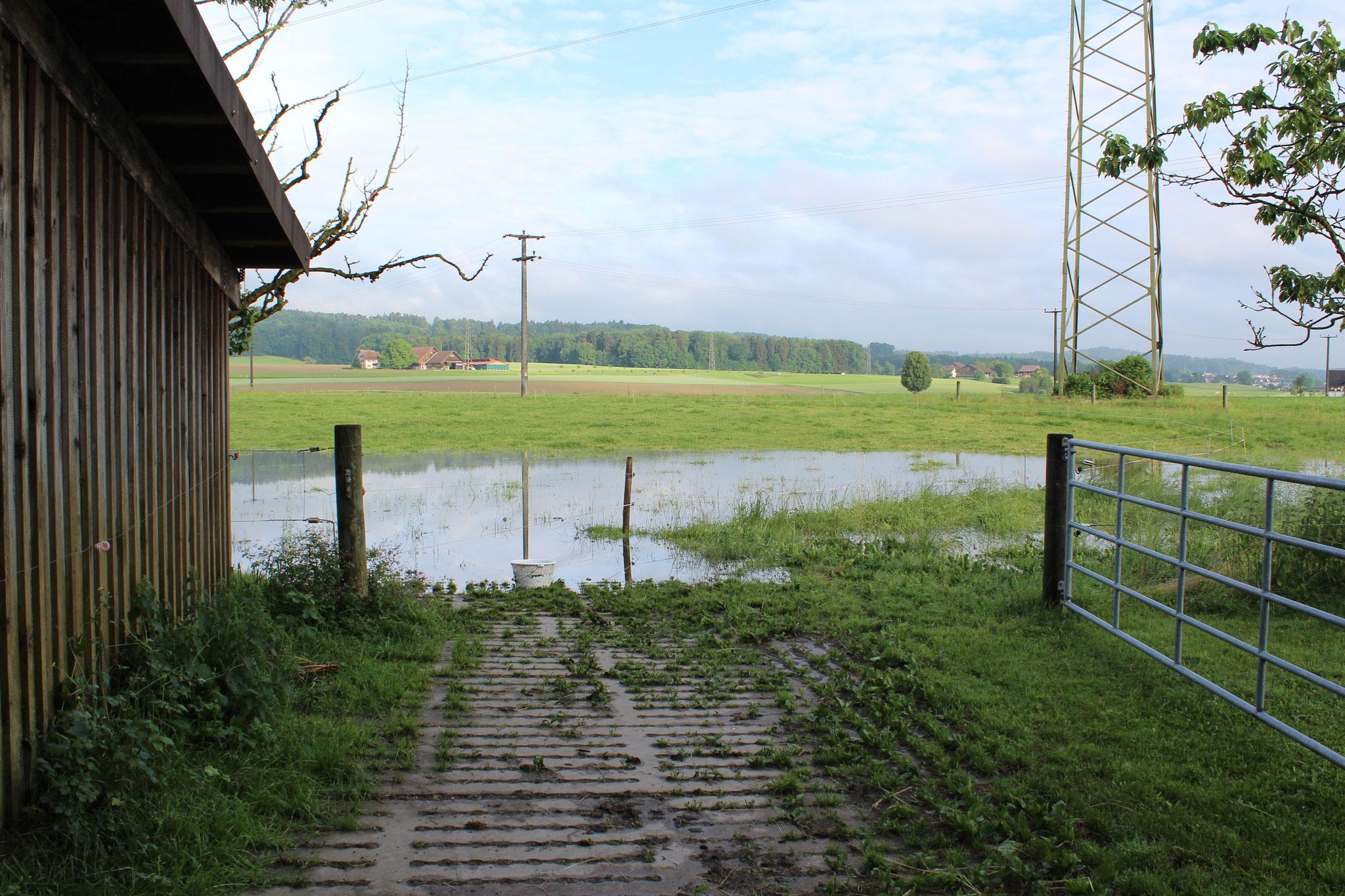 Hochwasser 07.06.2015