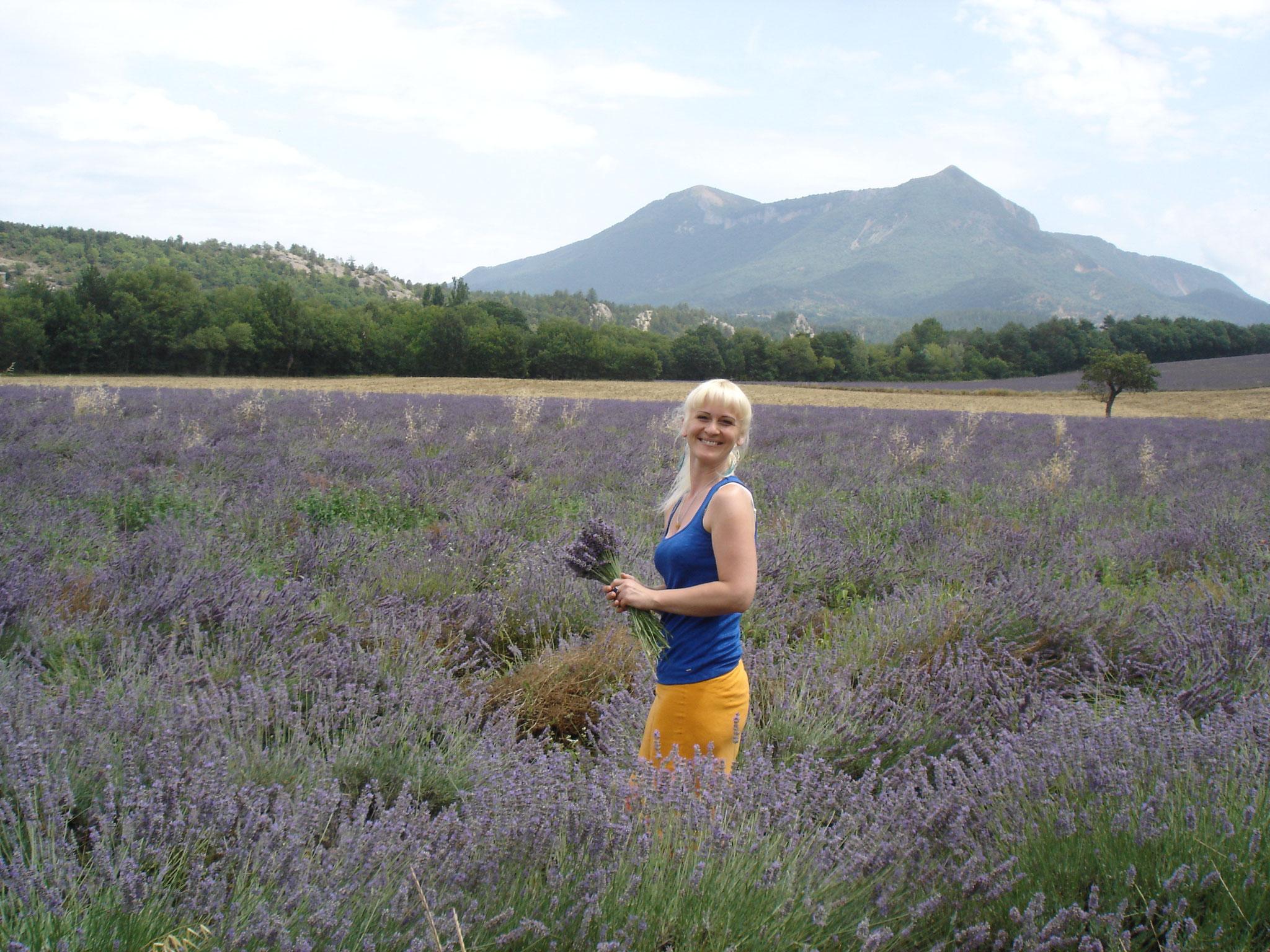 Entre Digne et Valensole - Alpes de Haute-Provence
