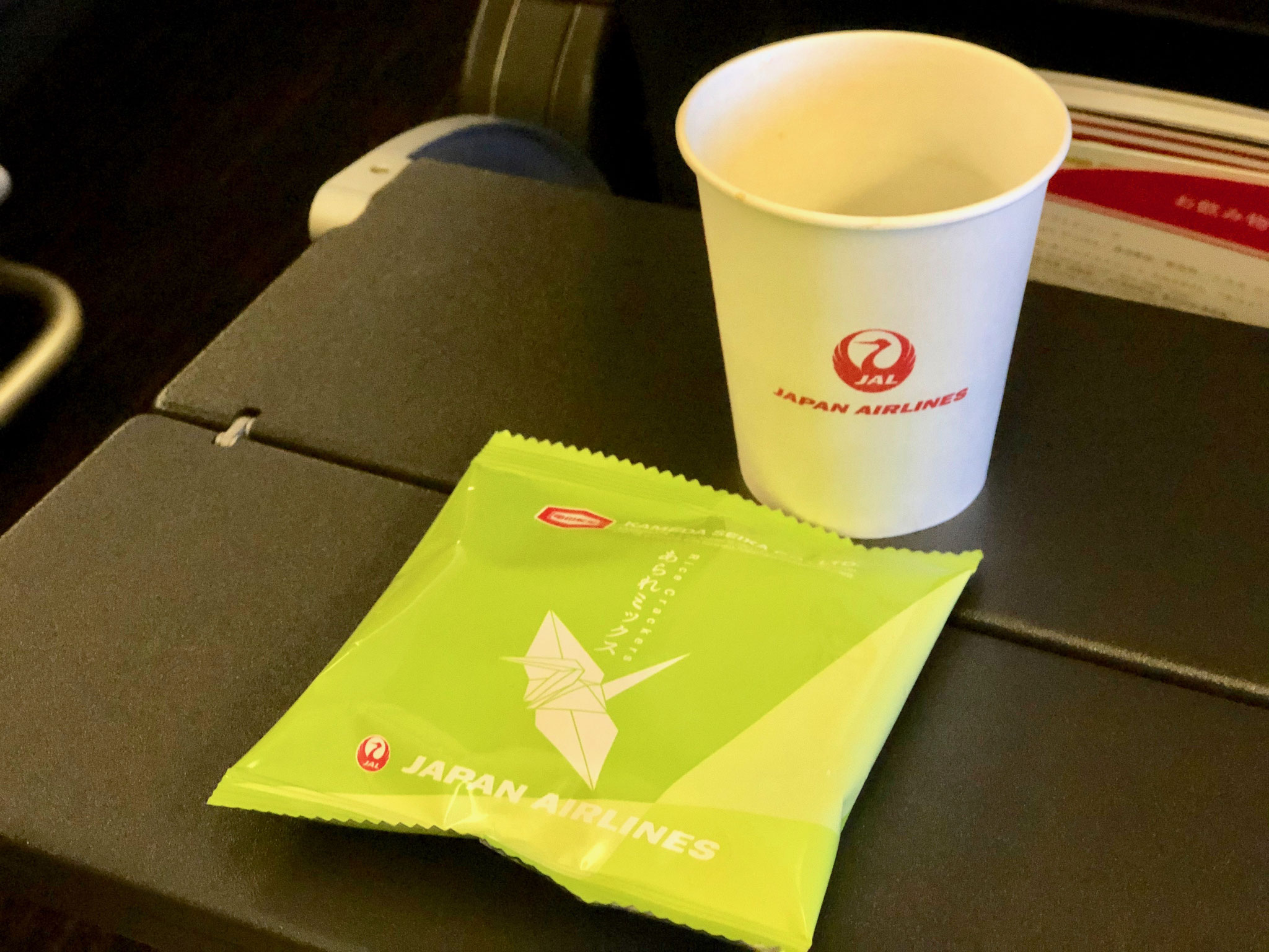 日本航空のベテラン客室乗務員が懇切丁寧に対応してくれた旅