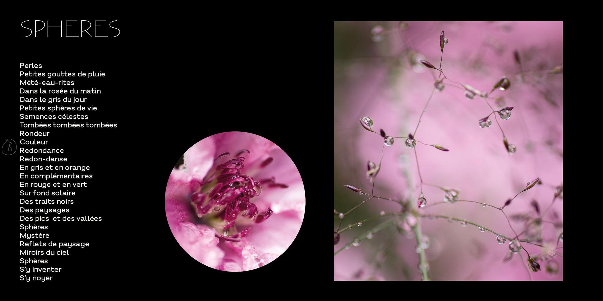 bulles de vie photo nature jardin naturel @johannegicquel.com