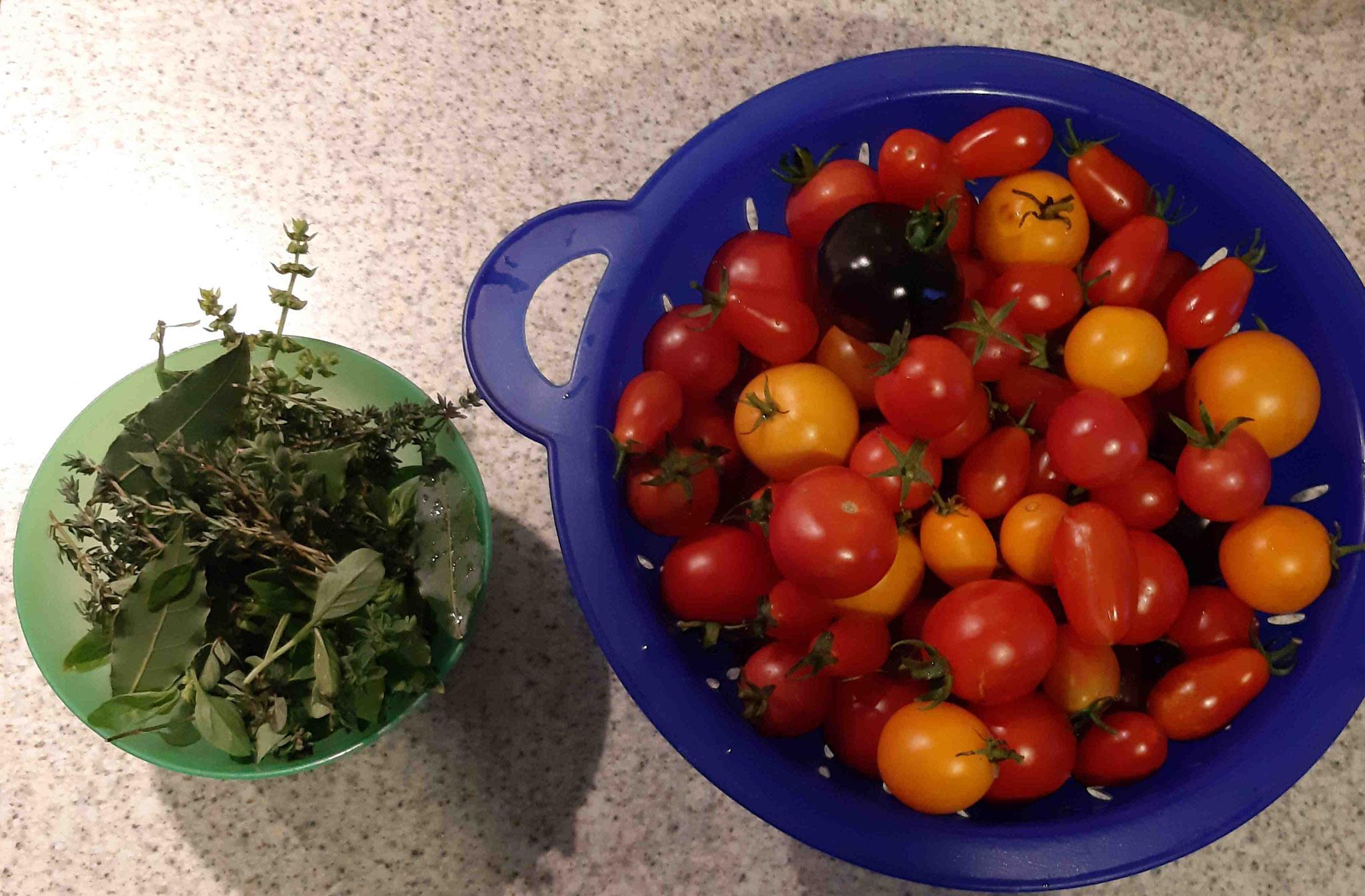 Zutaten für die EM-Tomaten-Salsa