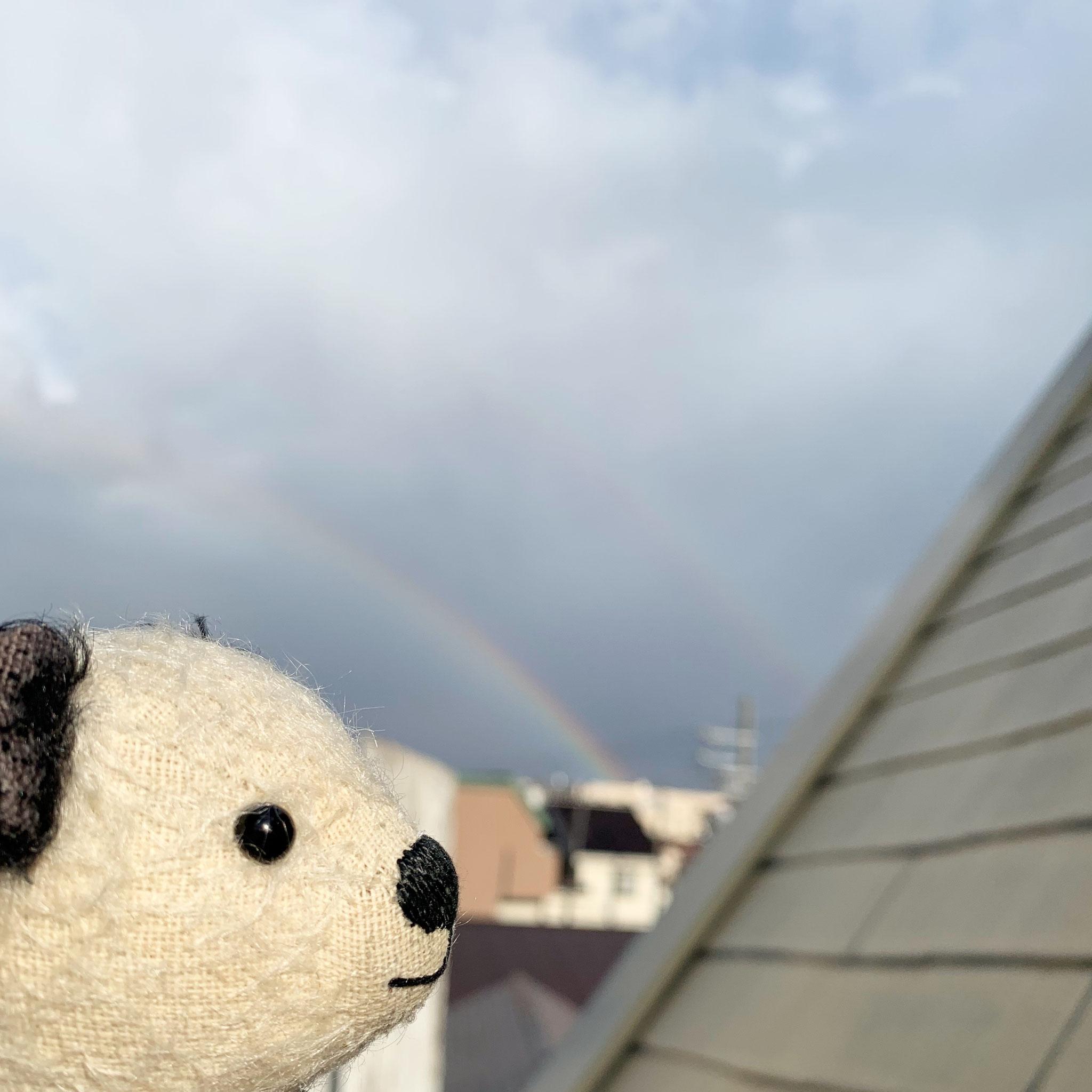二重の虹だよー