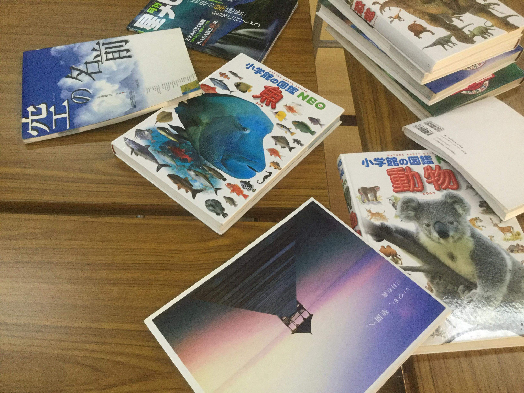 図鑑や写真集もあります。