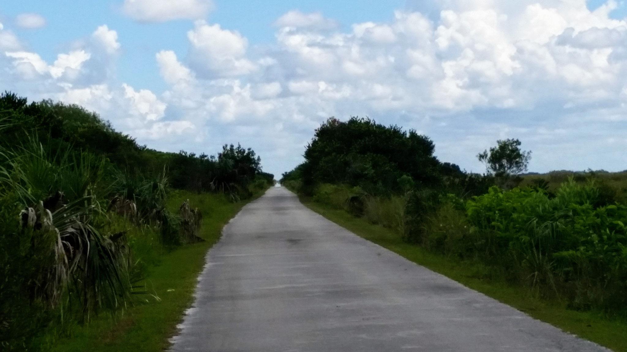 Fahrradtour durch die Everglades..auch sehr erlebnisreich