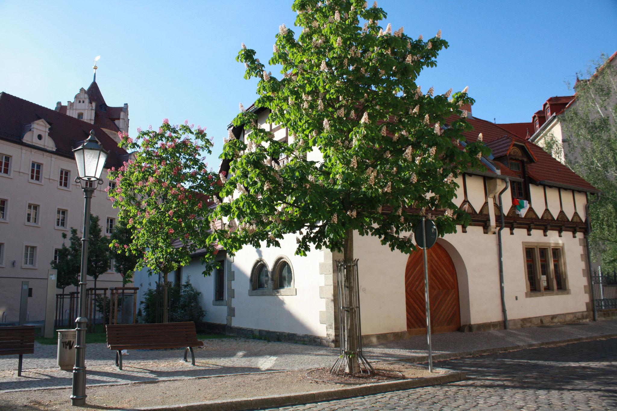 Бернбург