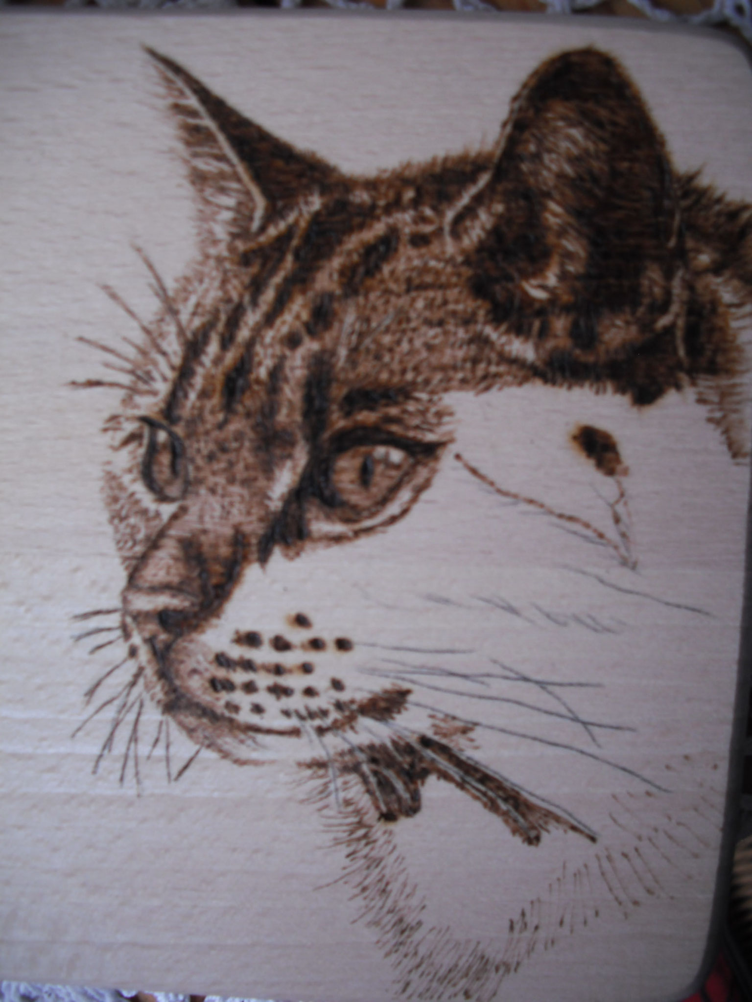 Brandmalerei 1a-handarbeit